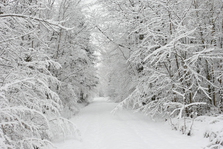 Beautiful Snow Desktop Wallpapers Top Free Beautiful Snow Desktop Backgrounds Wallpaperaccess