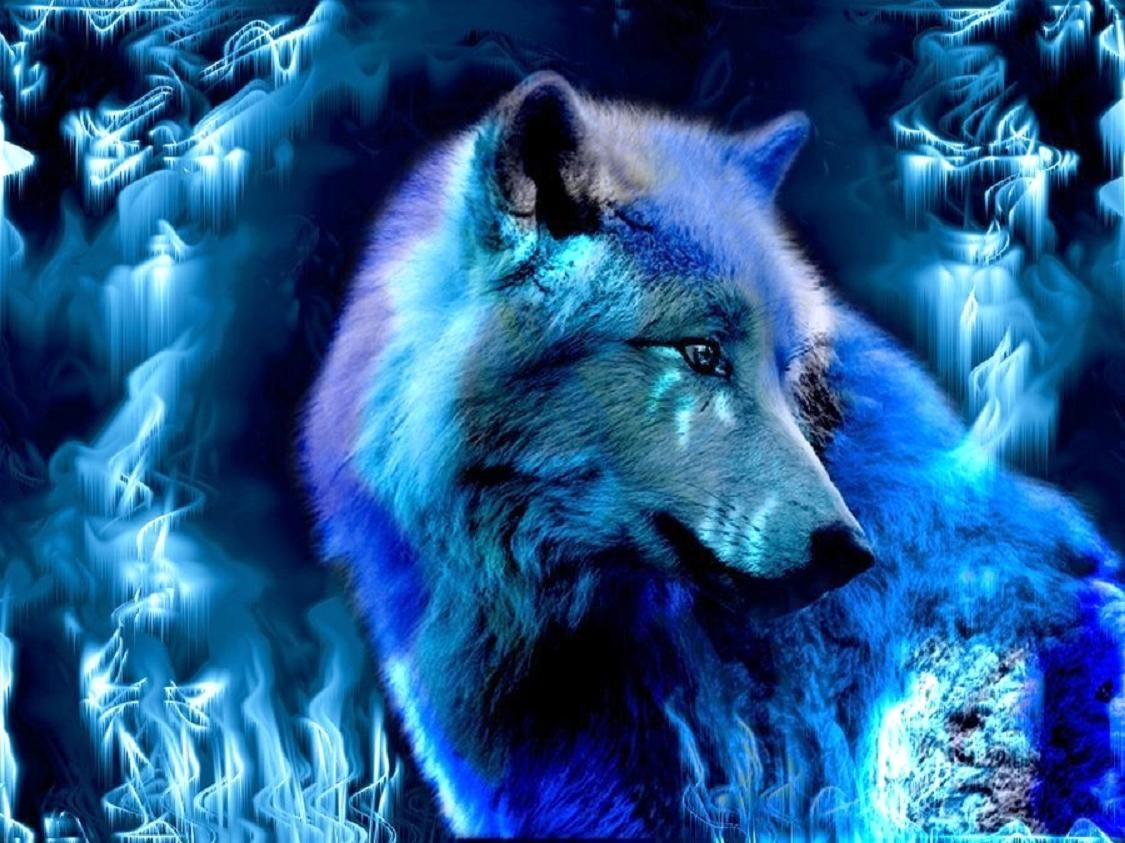 Blue Wolf Wallpapers Top Free Blue Wolf Backgrounds Wallpaperaccess
