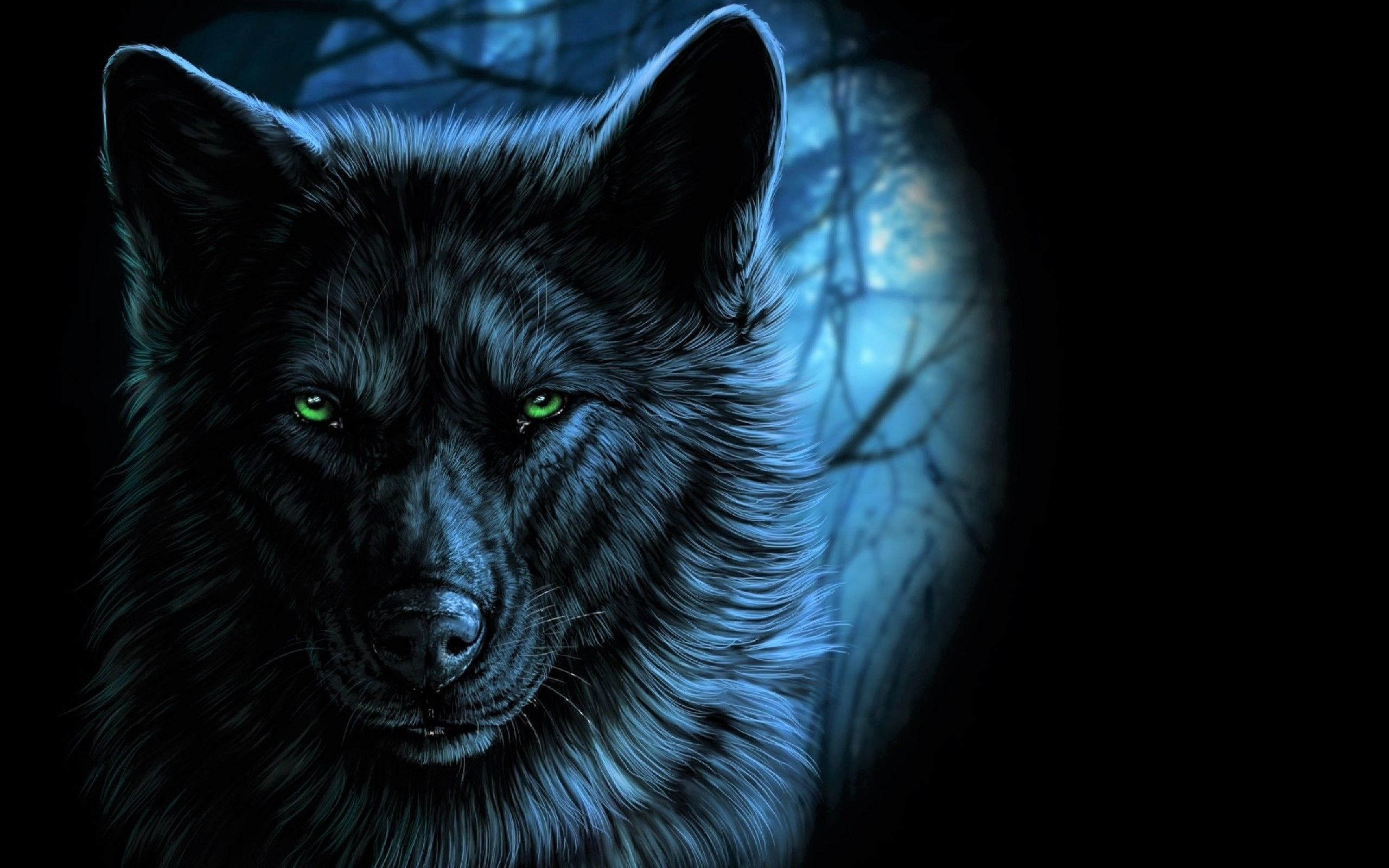 67 best free blue wolf wallpapers wallpaperaccess