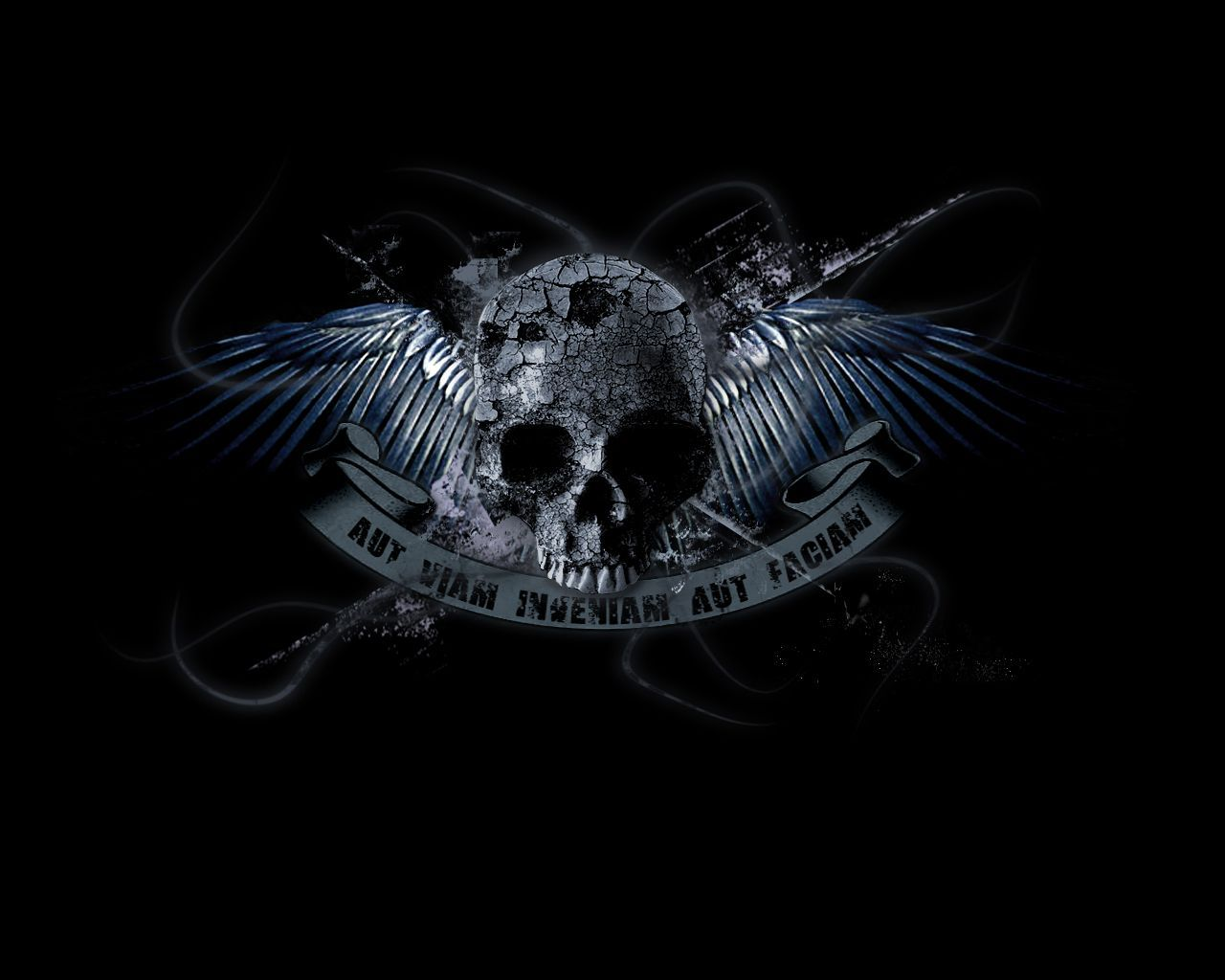 Skull With Wings Wallpapers Top Free Skull With Wings