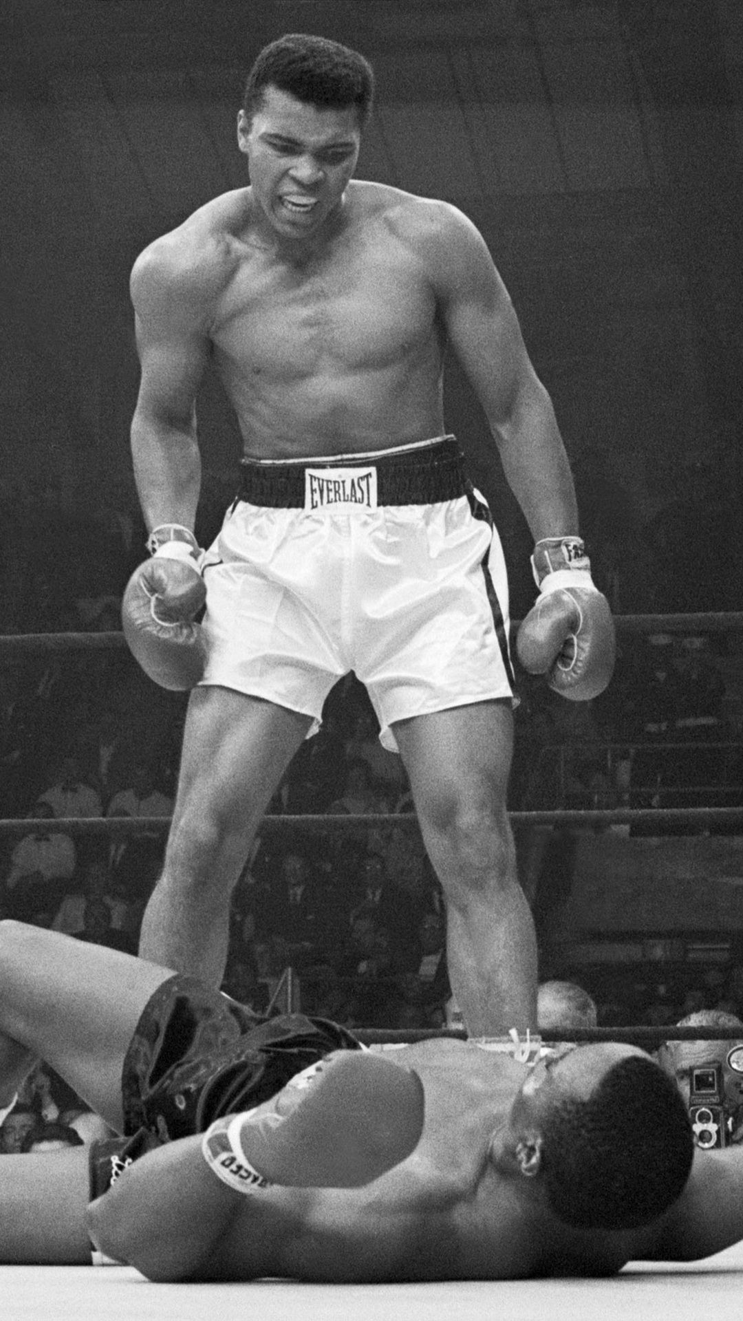 Muhammad Ali Iphone Wallpapers Top Free Muhammad Ali Iphone Backgrounds Wallpaperaccess