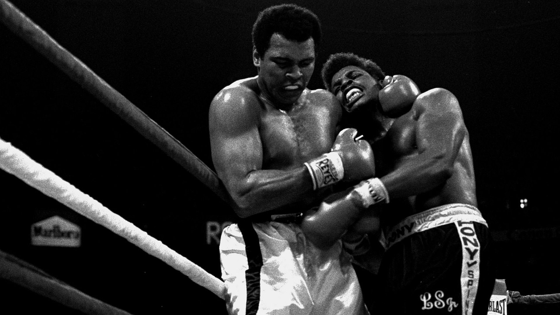 Muhammad Ali Wallpapers Top Free Muhammad Ali Backgrounds