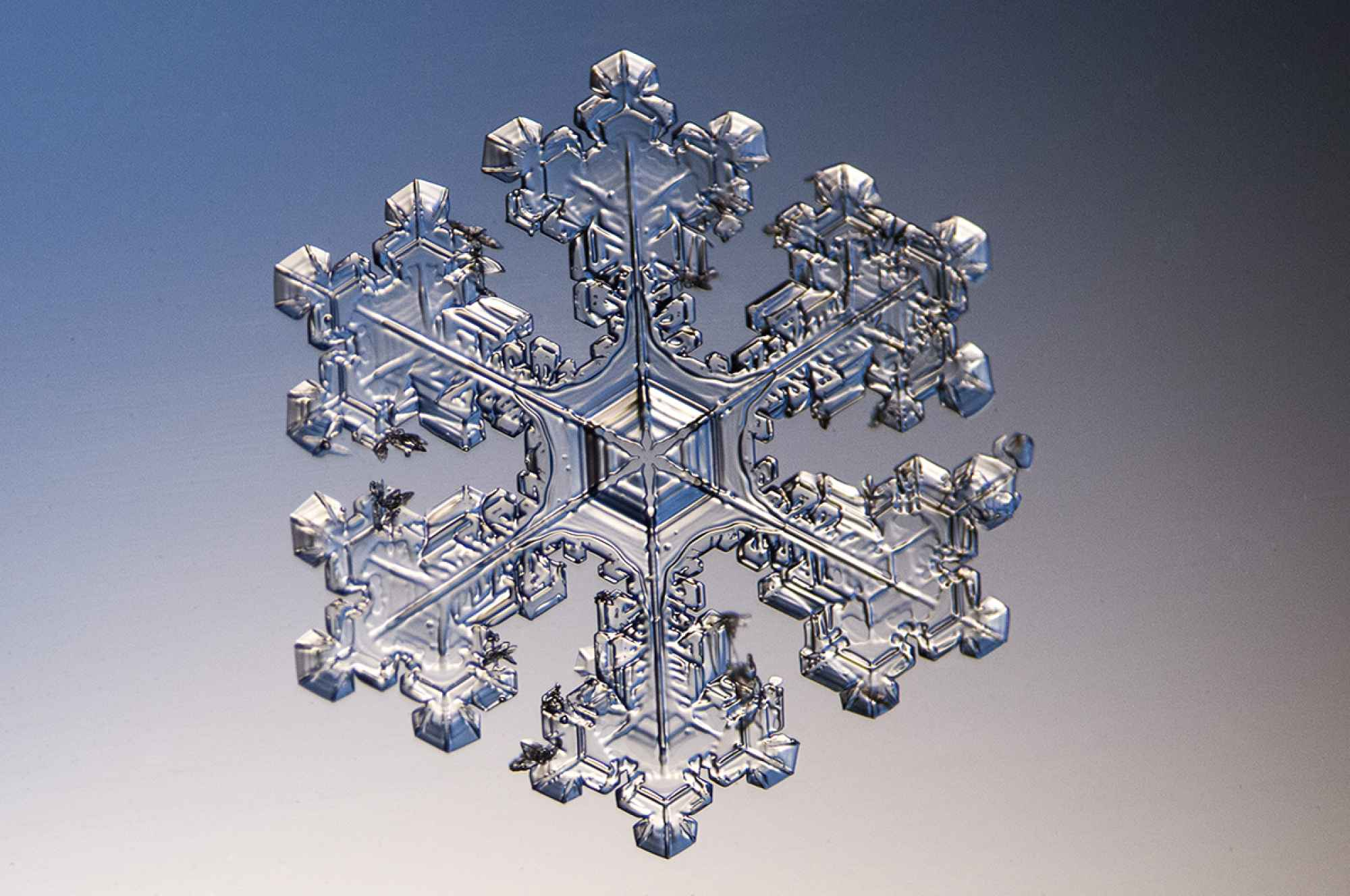 Snowflake Wallpapers Top Free Snowflake Backgrounds Wallpaperaccess