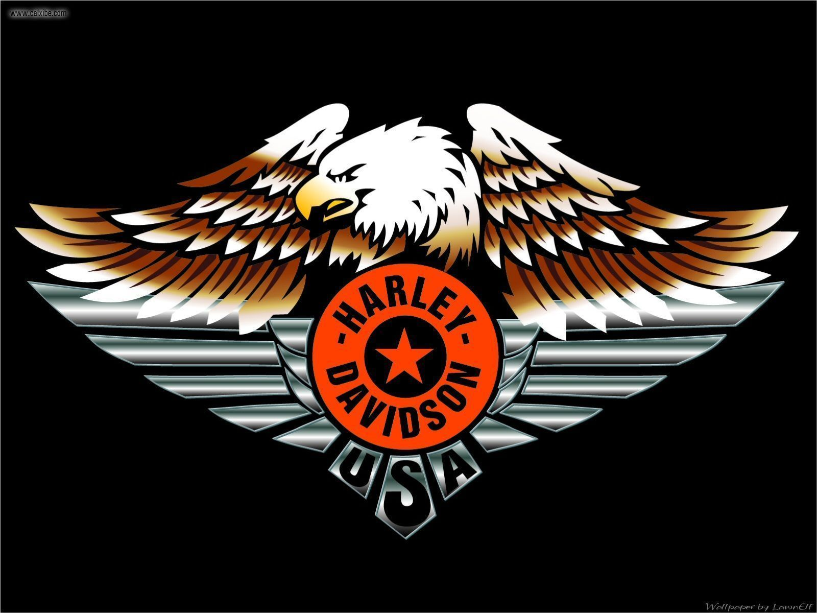 Harley-Davidson Eagle Wallpapers - Top