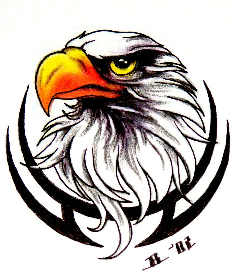 Biker And Eagle Wallpapers Top Free Biker And Eagle Backgrounds Wallpaperaccess Eagle tattoo wallpaper free download