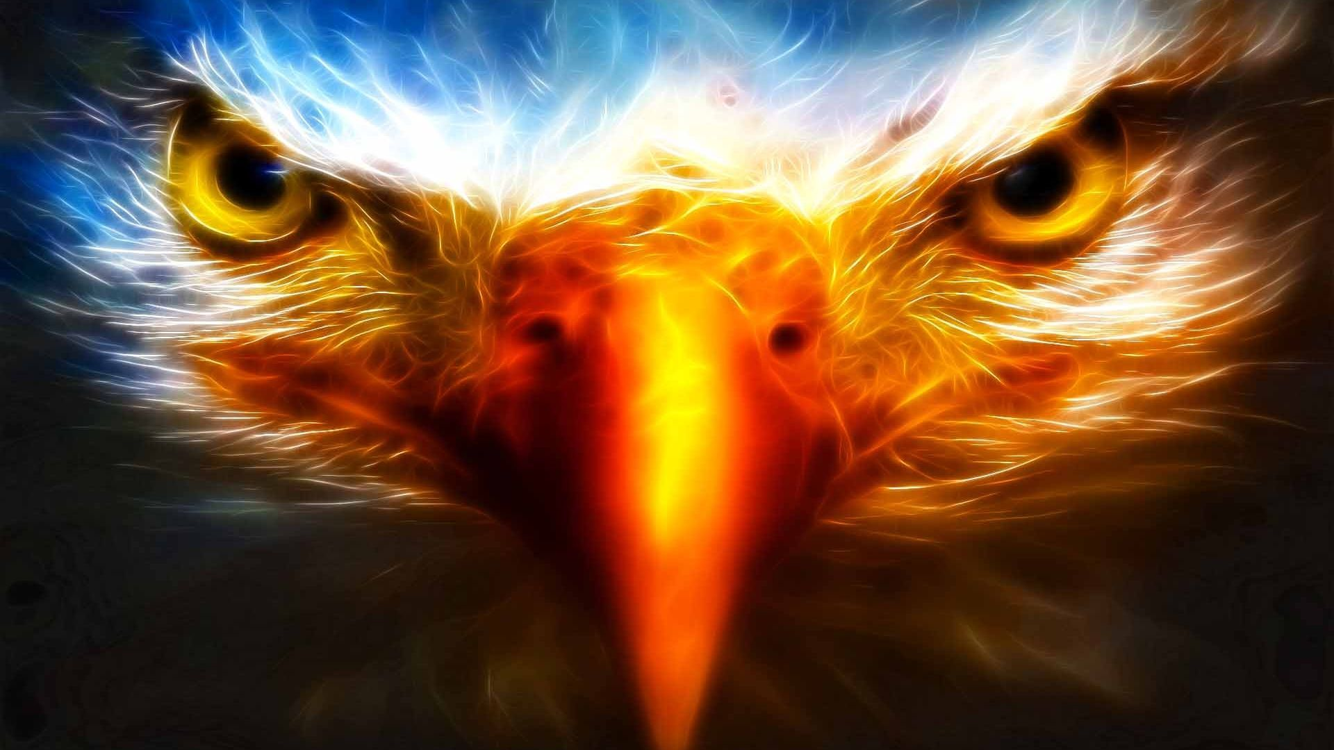 Cool Eagle Wallpapers Top Free Cool Eagle Backgrounds Wallpaperaccess