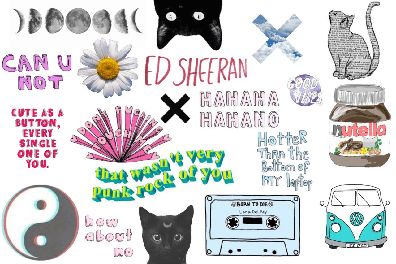 Tumblr Cute Cat Desktop Wallpapers Top Free Tumblr Cute