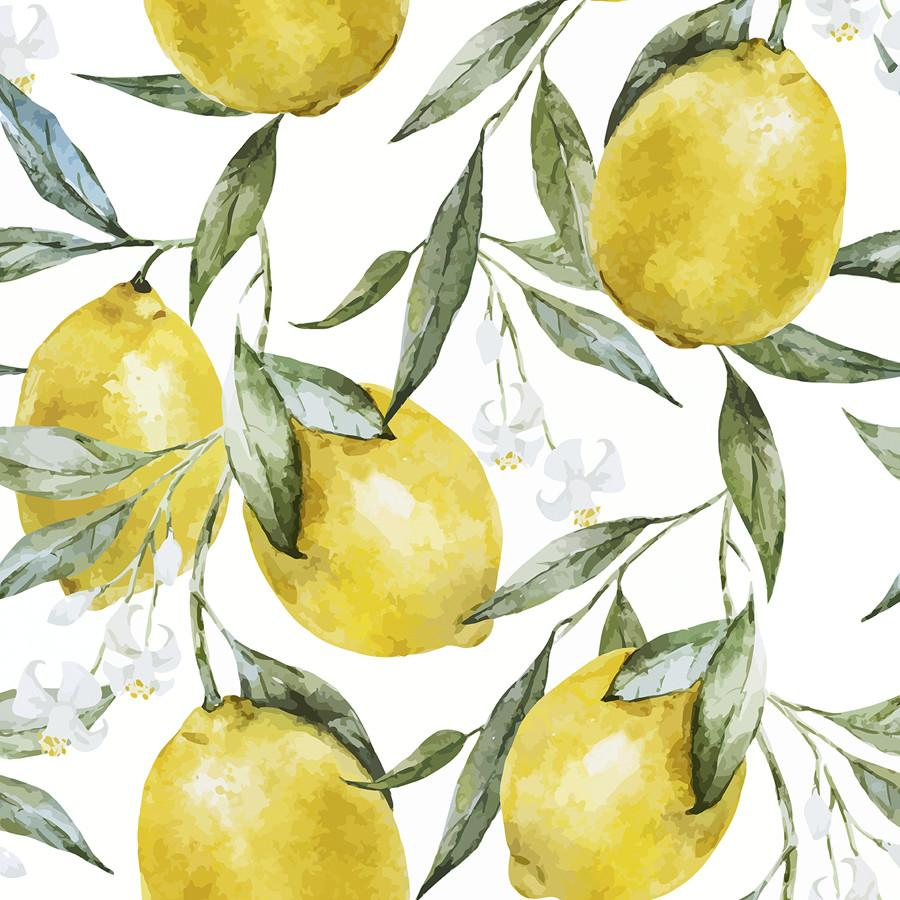 Lemons Wallpapers Top Free Lemons Backgrounds Wallpaperaccess