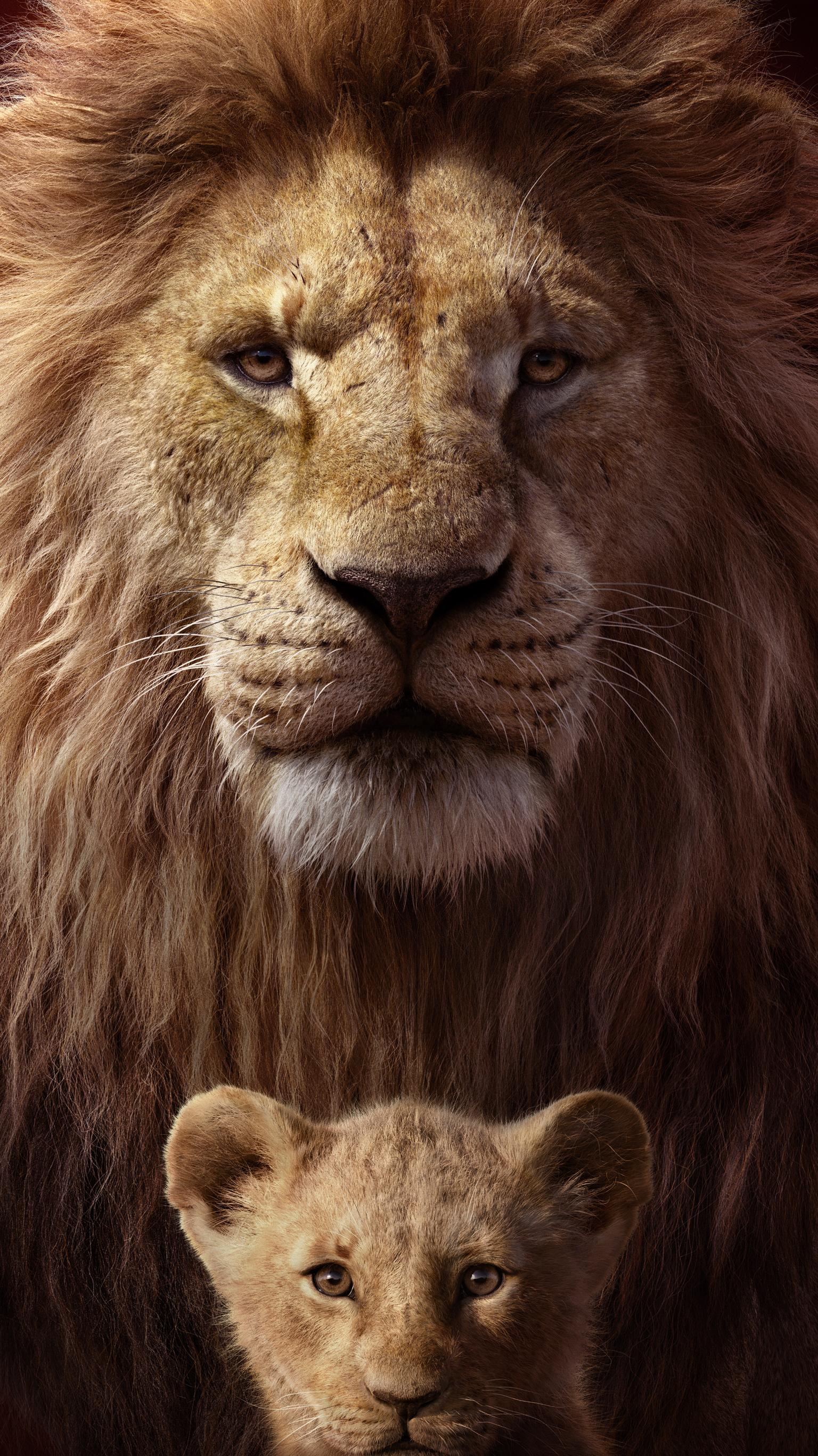 The Lion King 2019 Wallpapers Top Free The Lion King 2019