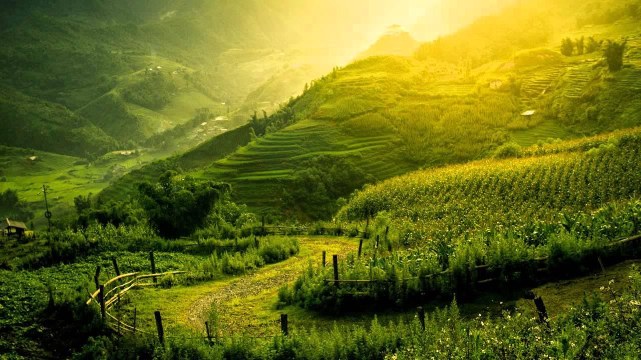 Calming Nature Wallpapers Top Free Calming Nature Backgrounds Wallpaperaccess