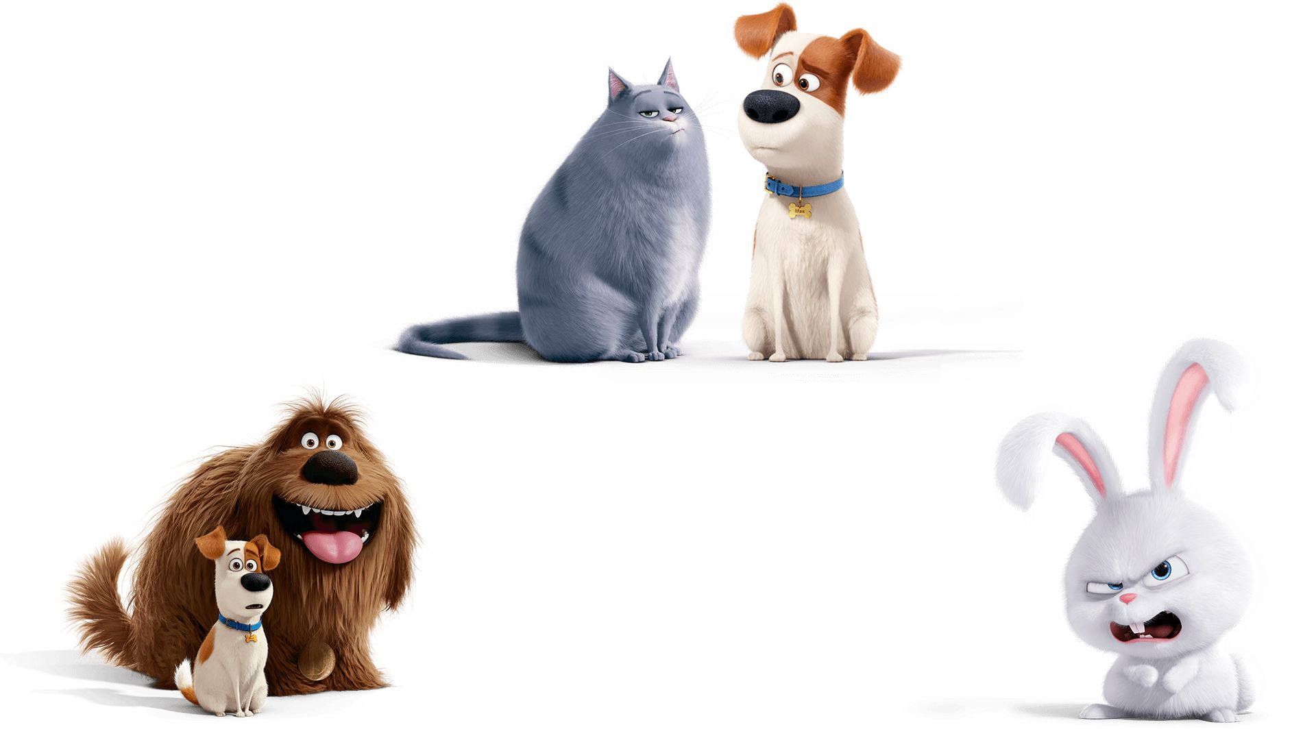 тайная жизнь домашних животных картинки арты