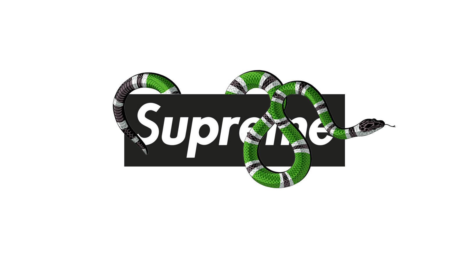 Supreme Gucci Wallpapers Top Free Supreme Gucci