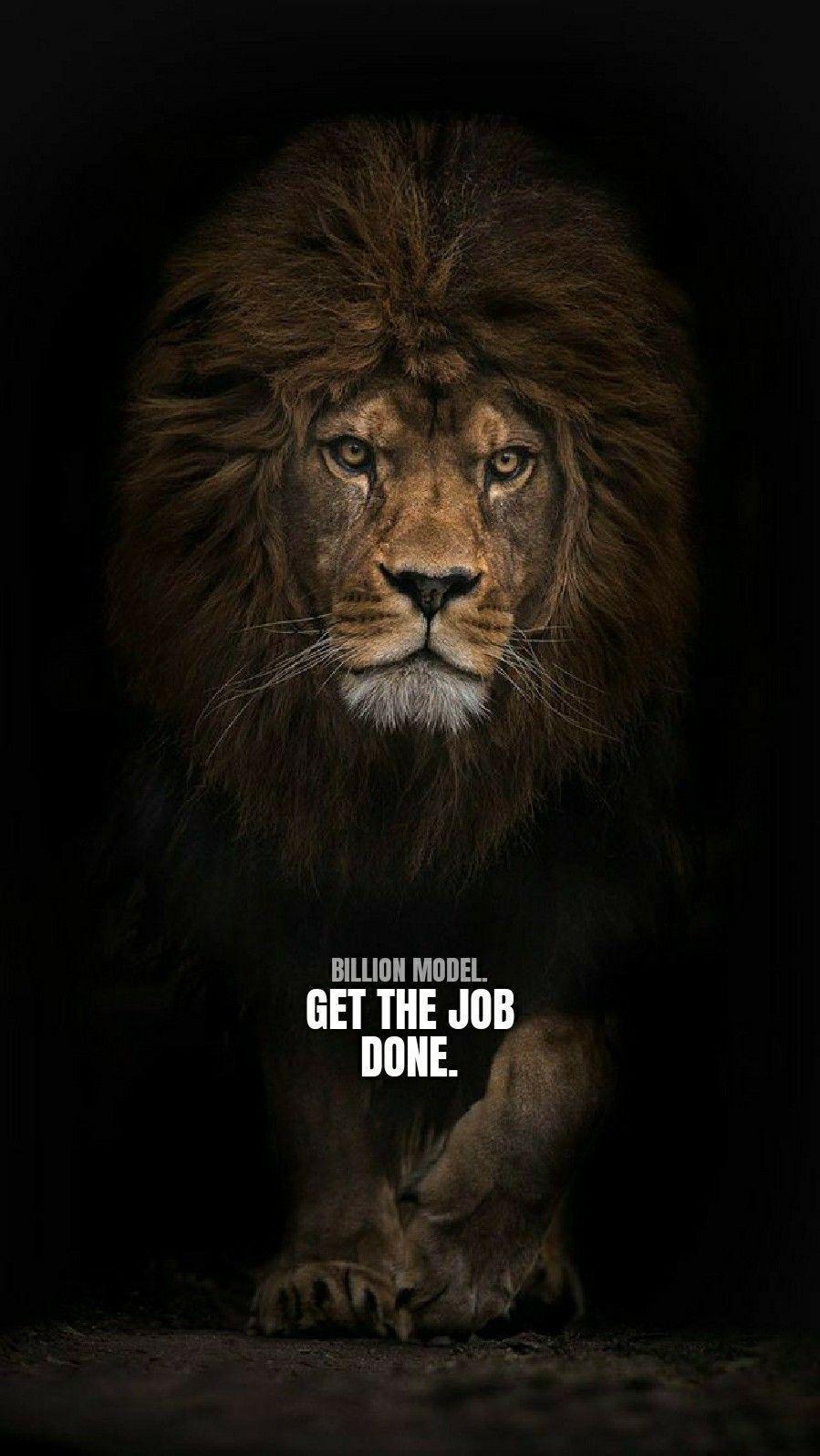 Motivational Lion Phone Wallpapers Top Free Motivational