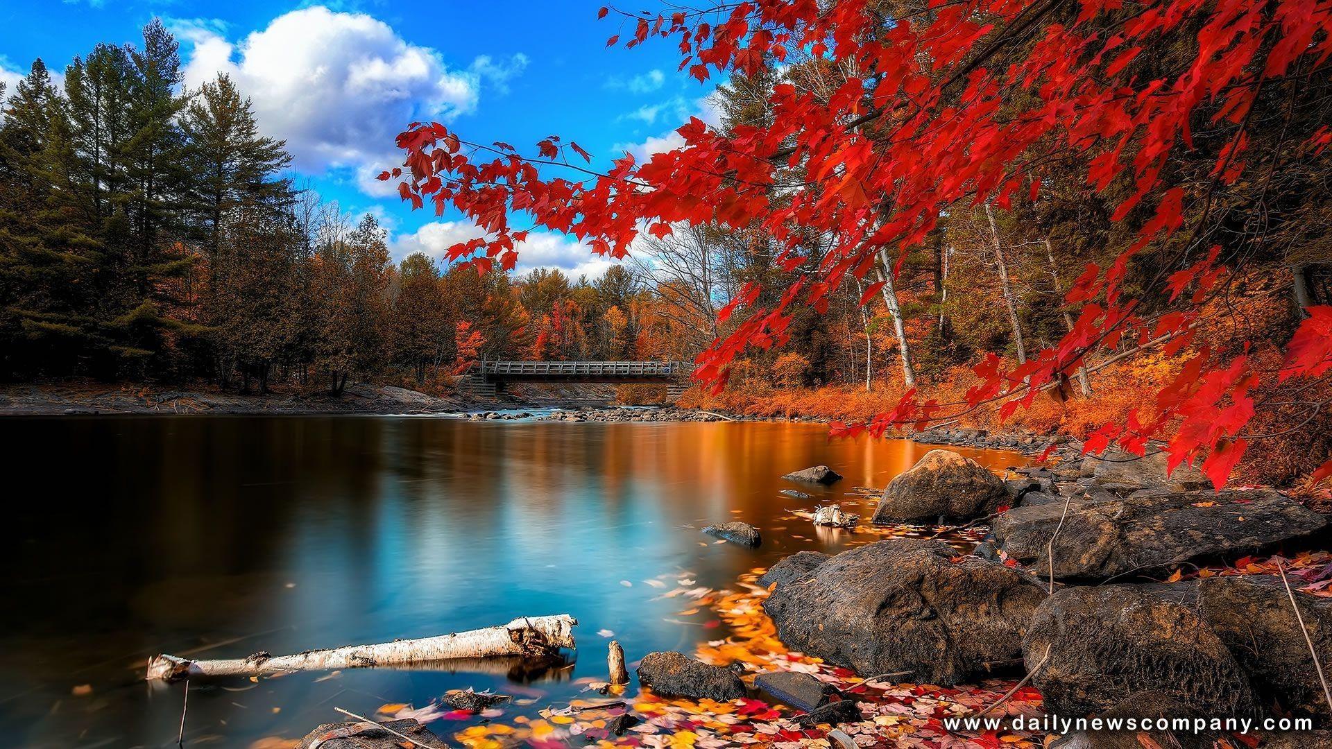 Autumn Scenes Desktop Wallpapers Top Free Autumn Scenes Desktop Backgrounds Wallpaperaccess