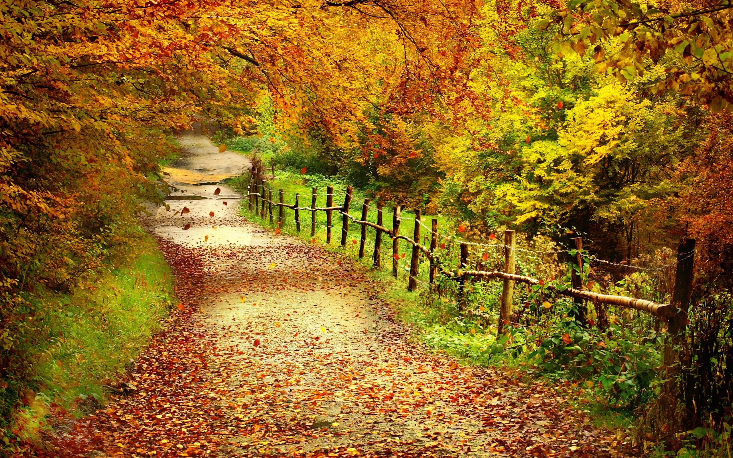 Autumn Scenes Desktop Wallpapers Top Free Autumn Scenes Desktop Backgrounds Wallpaperaccess