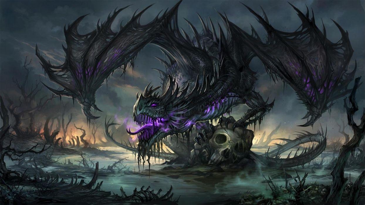 Black Dragon Wallpapers Top Free Black Dragon Backgrounds