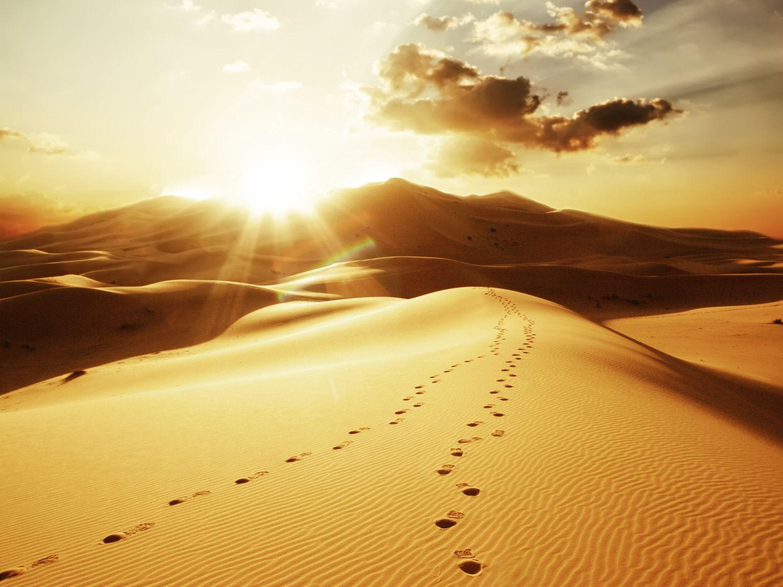Snow Desert Sun · Free photo on Pixabay