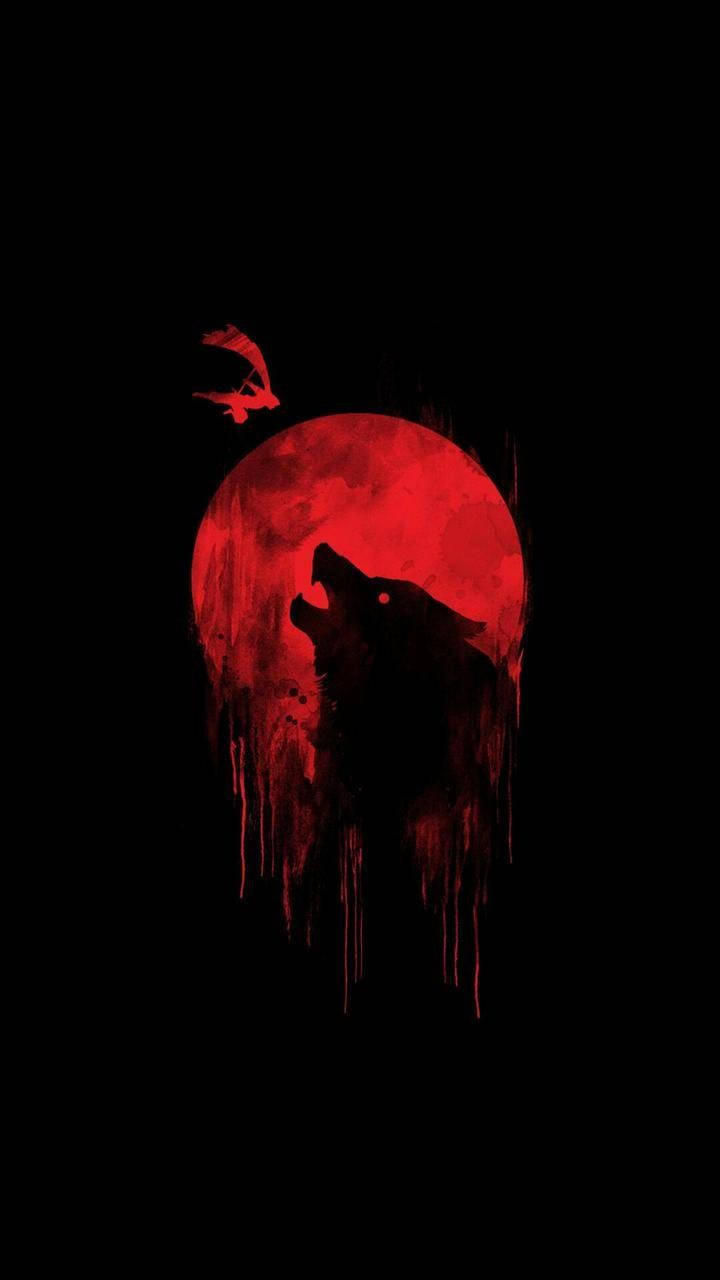 Blood Wolf Wallpapers Top Free Blood Wolf Backgrounds Wallpaperaccess