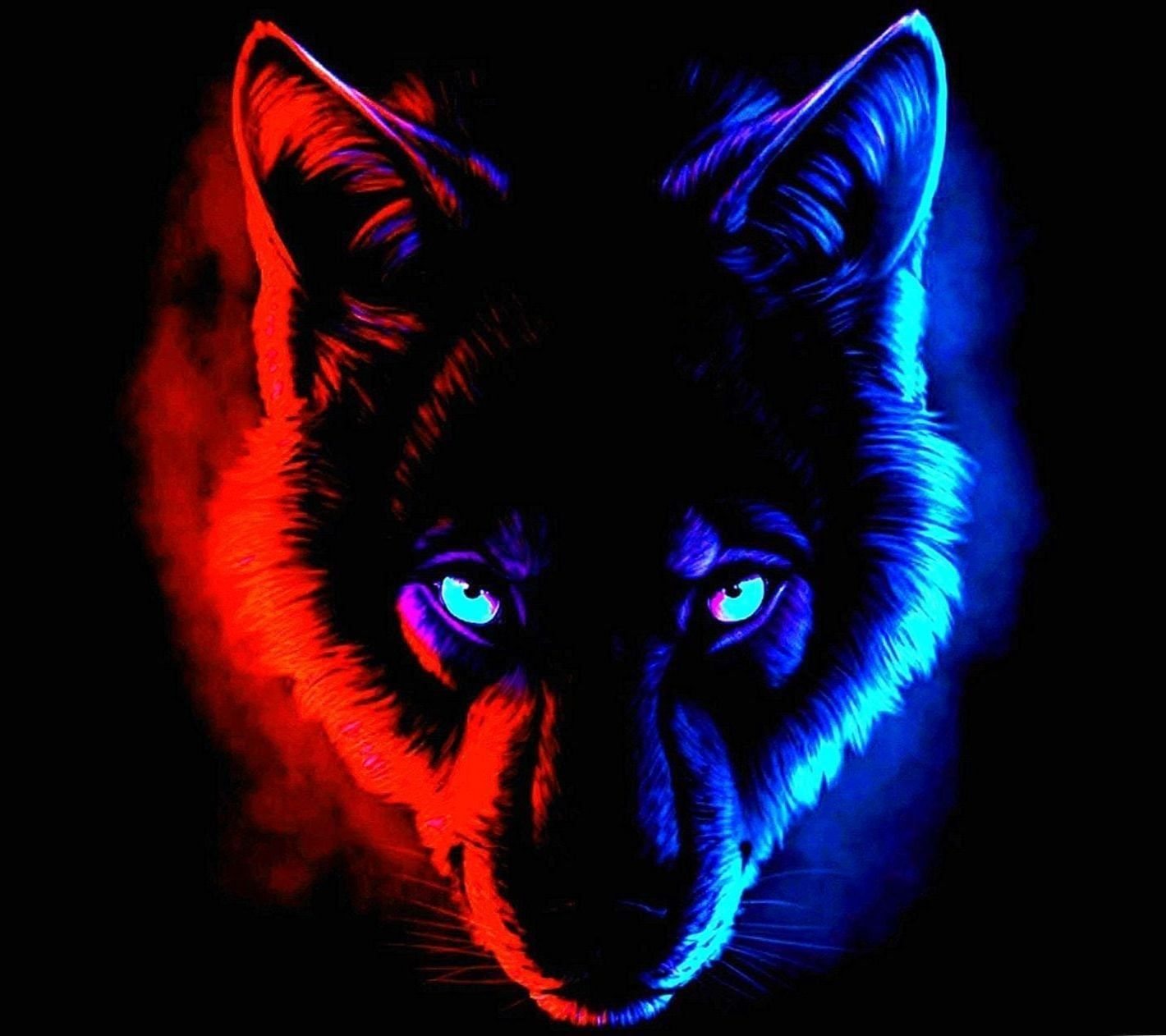 Red Wolf Wallpapers Top Free Red Wolf Backgrounds Wallpaperaccess