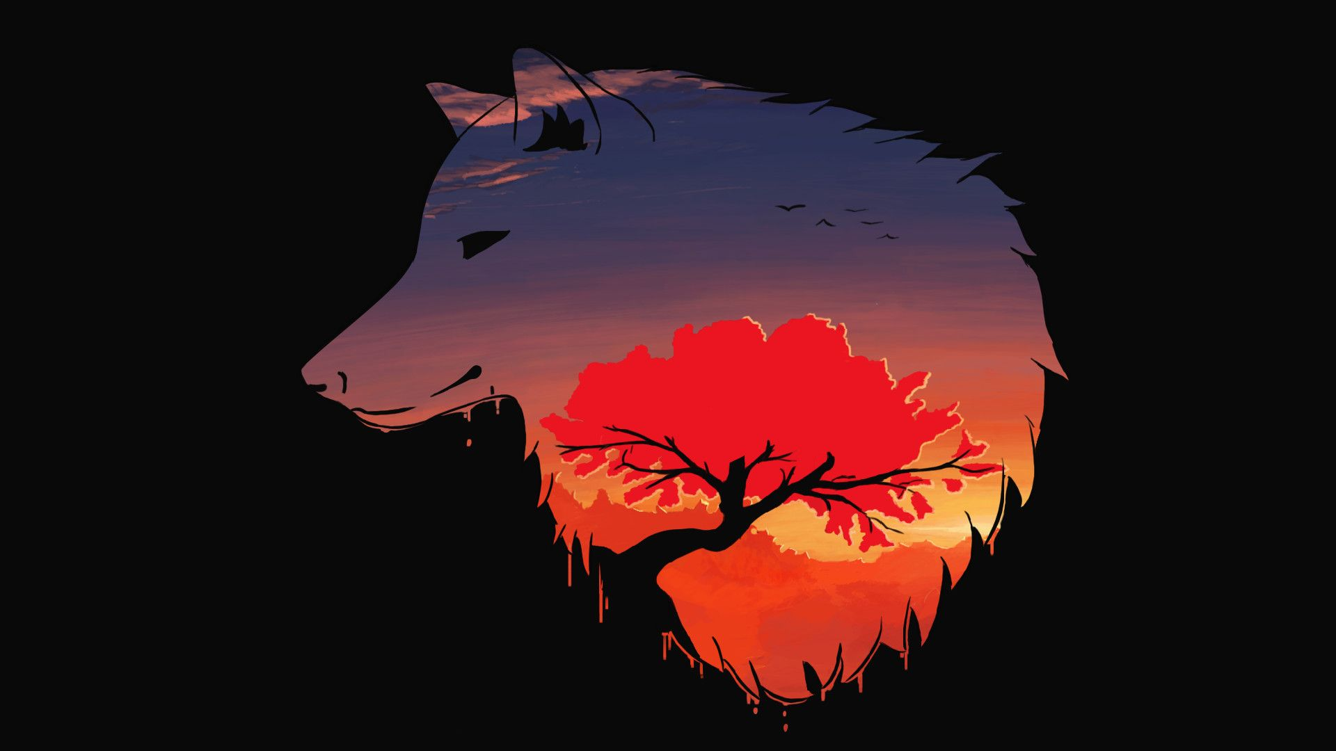 Minimalist Wolf Wallpapers Top Free Minimalist Wolf Backgrounds Wallpaperaccess