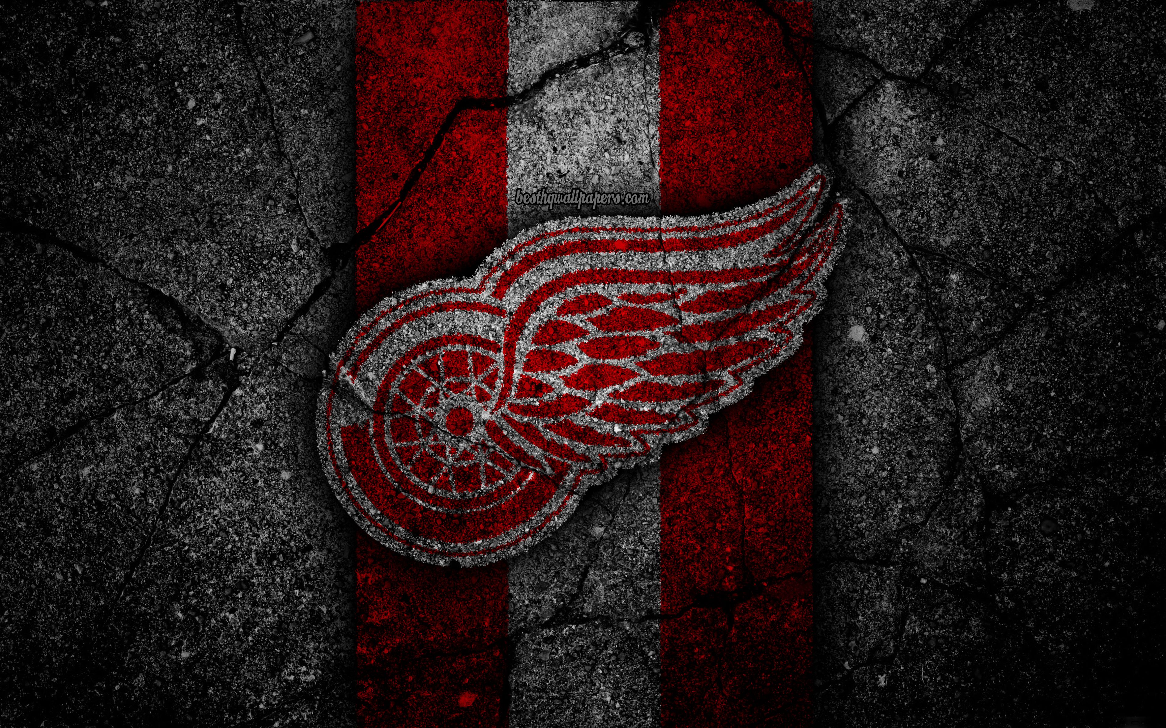 Red Wings Wallpapers Top Free Red Wings Backgrounds