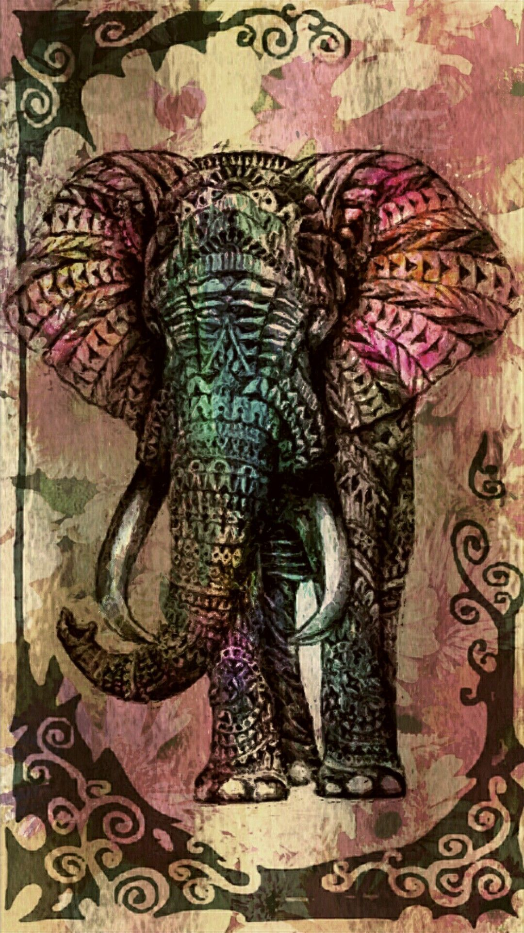 Cage The Elephant Iphone Wallpapers Top Free Cage The Elephant