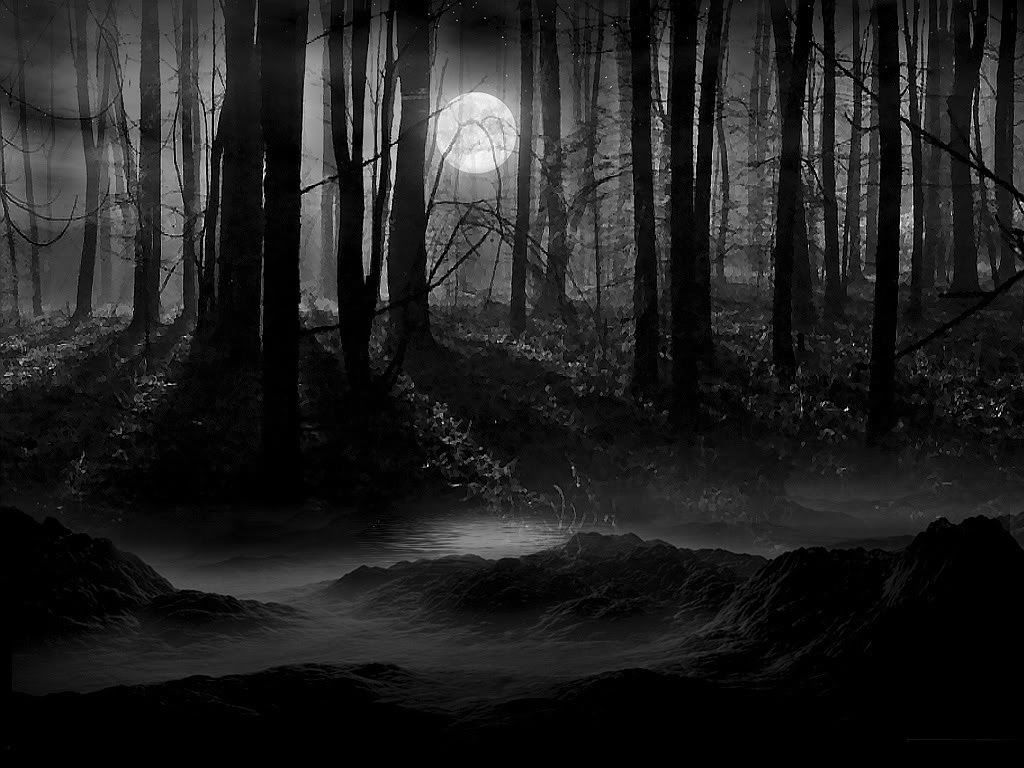 Dark Forest Moon Wallpapers Top Free Dark Forest Moon Backgrounds Wallpaperaccess Here are only the best creepy forest wallpapers. dark forest moon wallpapers top free