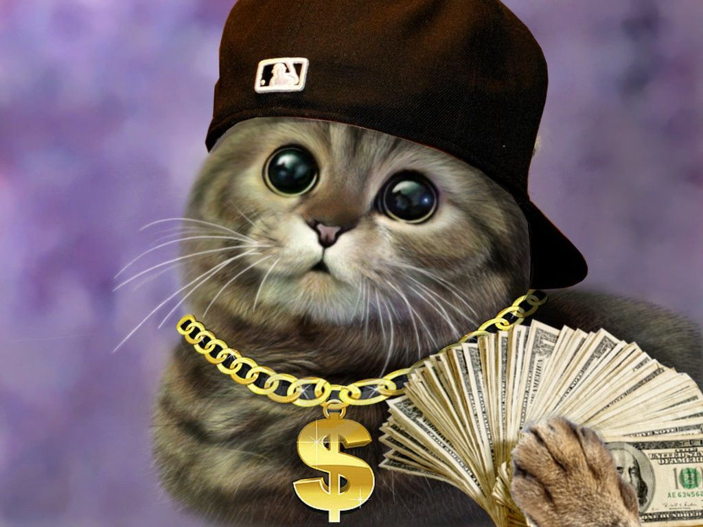 грибы картинки для аватарки в стиме коты мама отдала