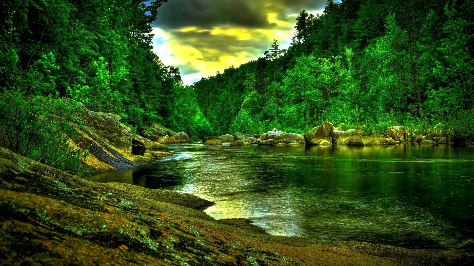 Full Hd Nature Wallpapers Top Free Full Hd Nature