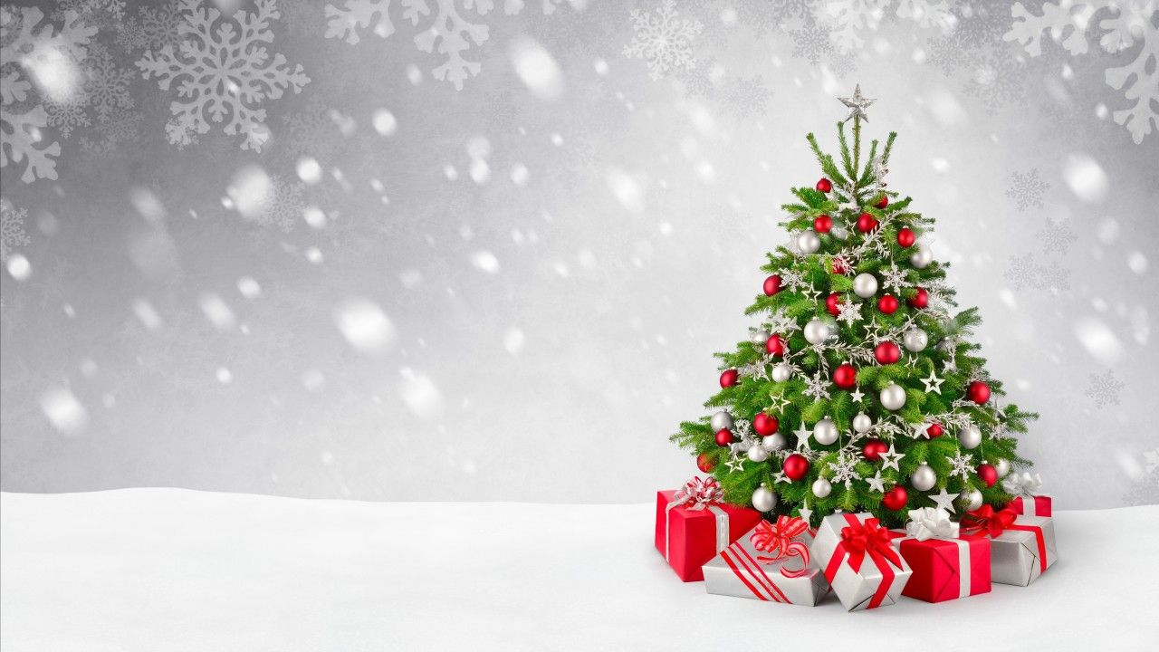 Christmas Tree Wallpapers Top Free Christmas Tree Backgrounds Wallpaperaccess