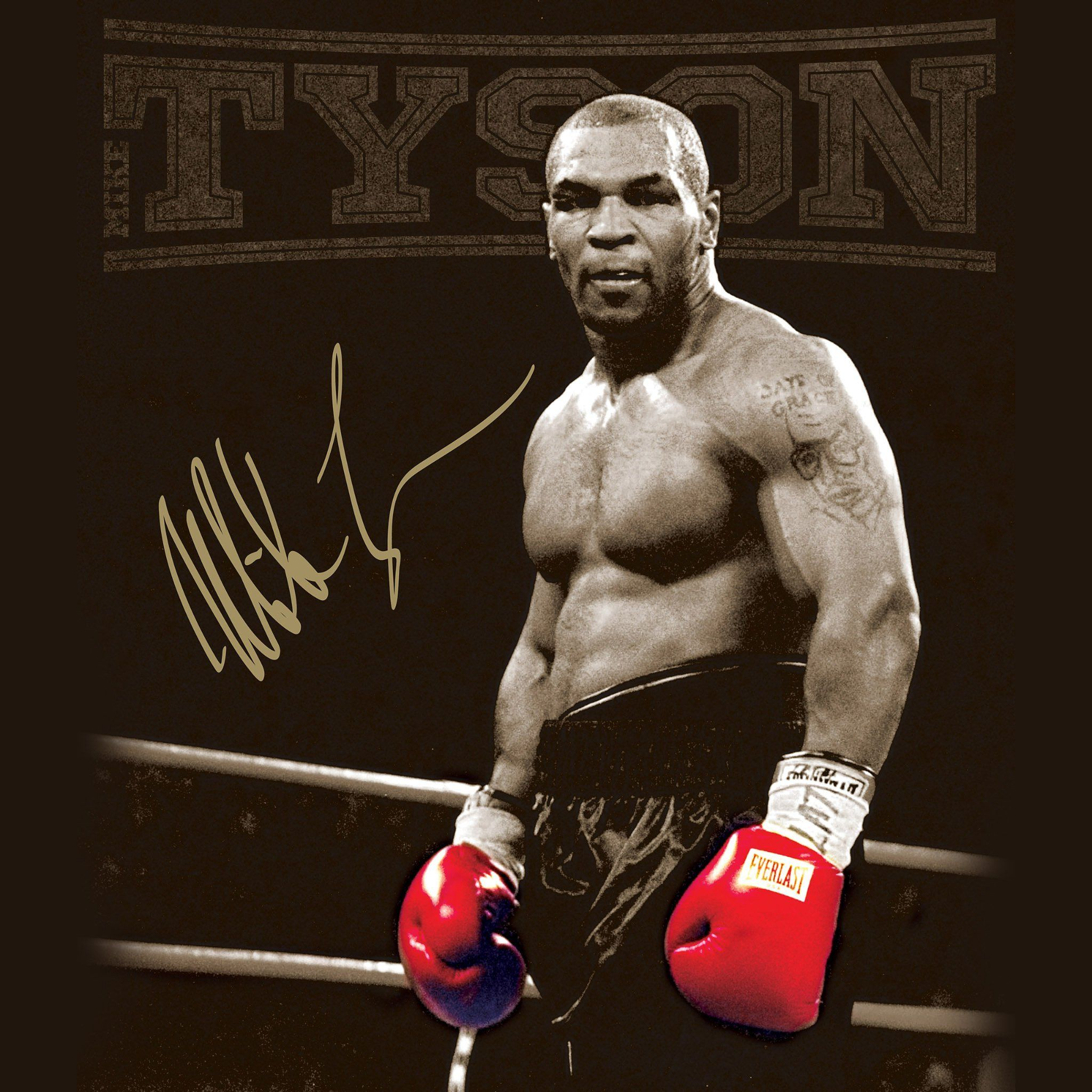 Mike Tyson Wallpapers Top Free Mike Tyson Backgrounds Wallpaperaccess