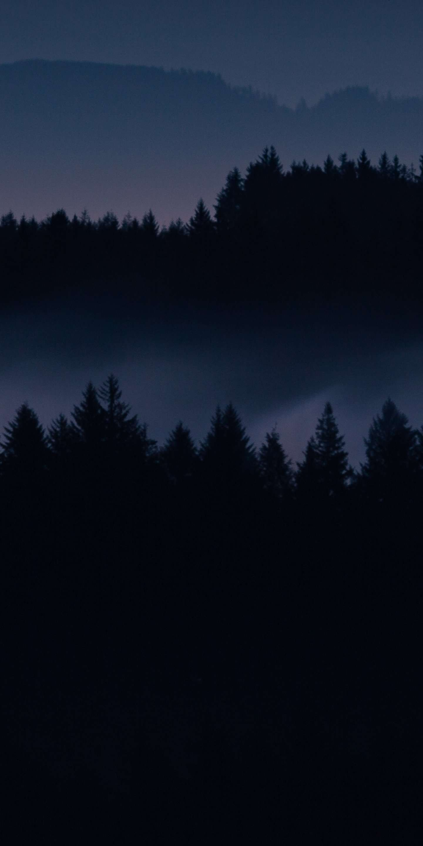 Dark Forest Iphone Wallpapers Top Free Dark Forest Iphone Backgrounds Wallpaperaccess