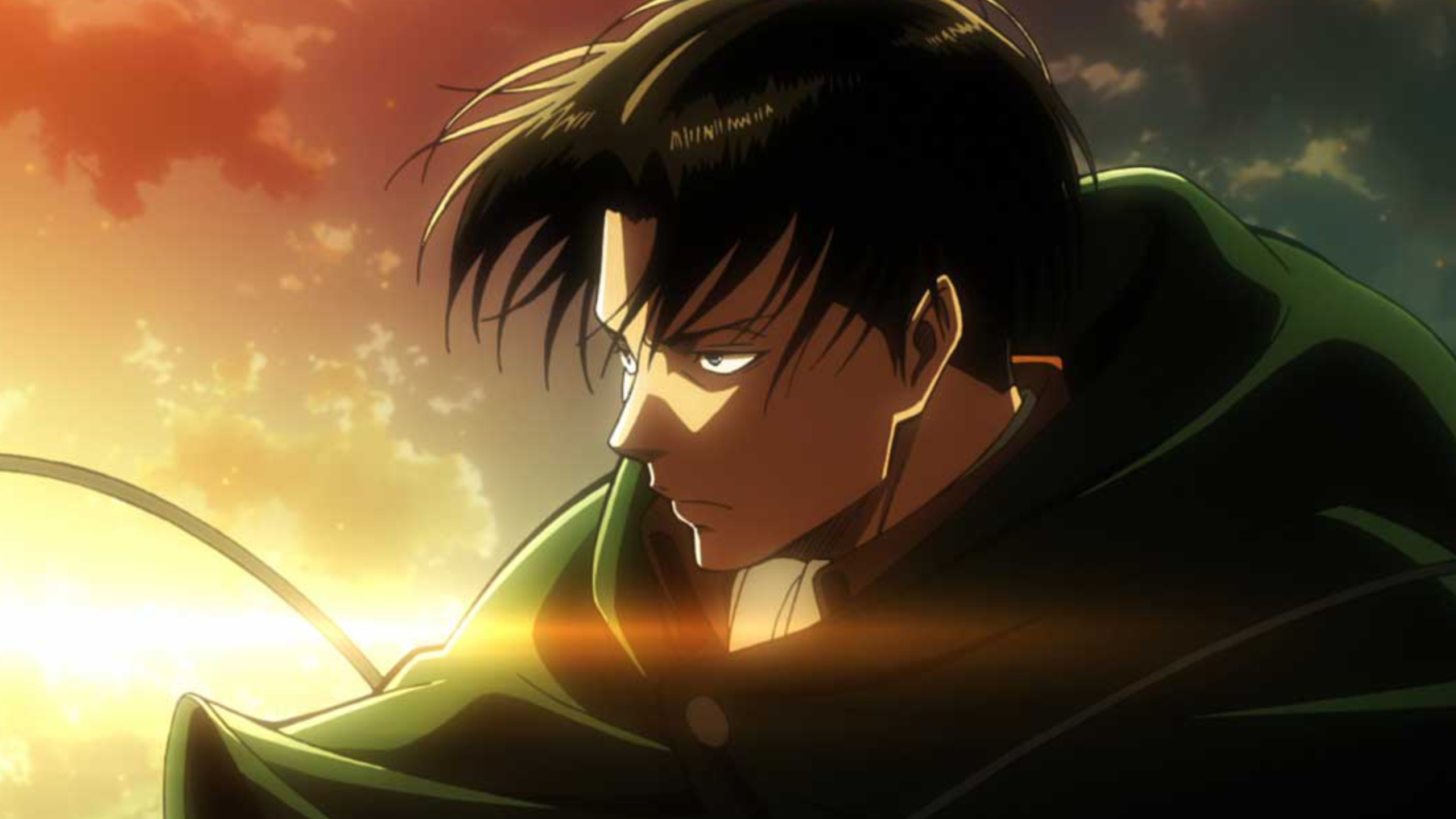 Levi Wallpapers Top Free Levi Backgrounds Wallpaperaccess