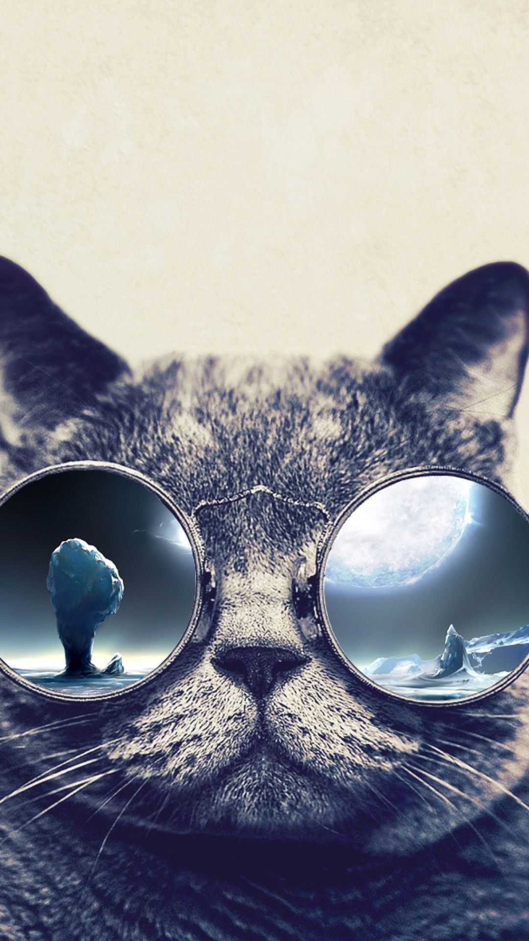 71 Best Free Cat Iphone Wallpapers Wallpaperaccess