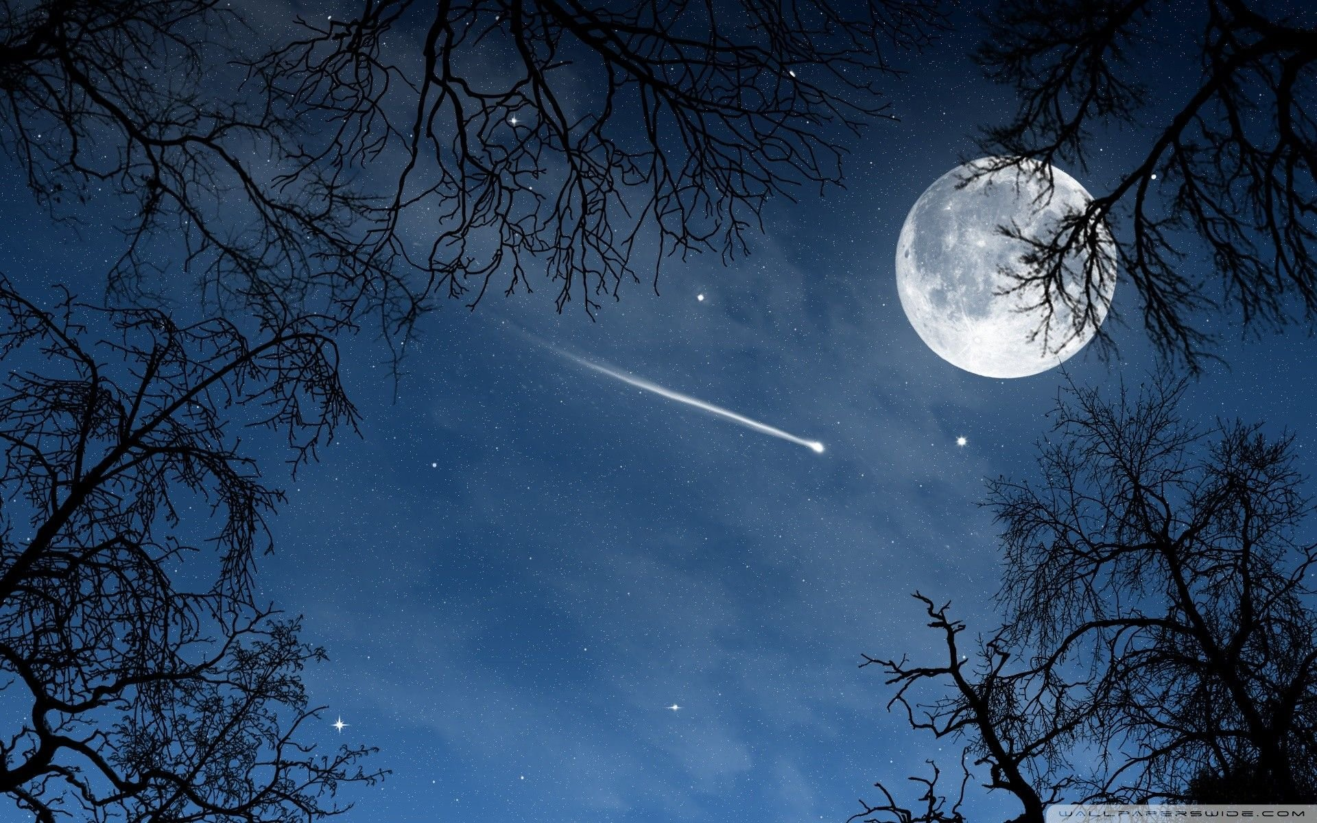 Shooting Stars Wallpapers Top Free Shooting Stars Backgrounds Wallpaperaccess
