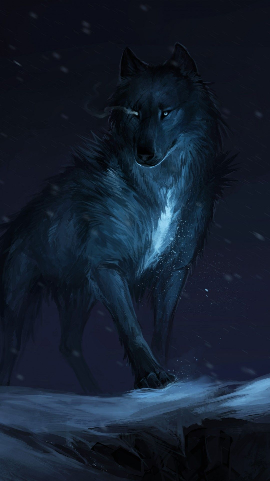 Black Fox Wallpapers Top Free Black Fox Backgrounds