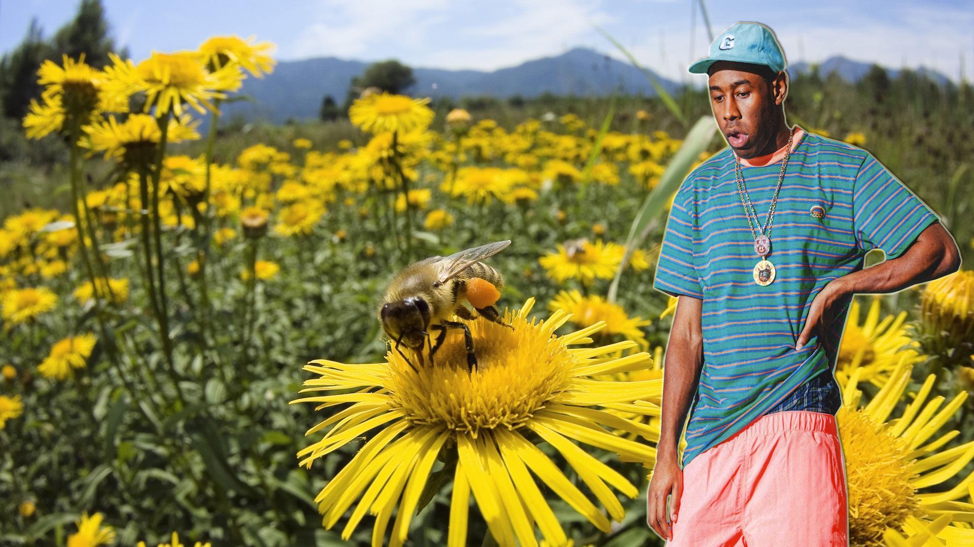 Tyler The Creator Desktop Wallpapers Top Free Tyler The