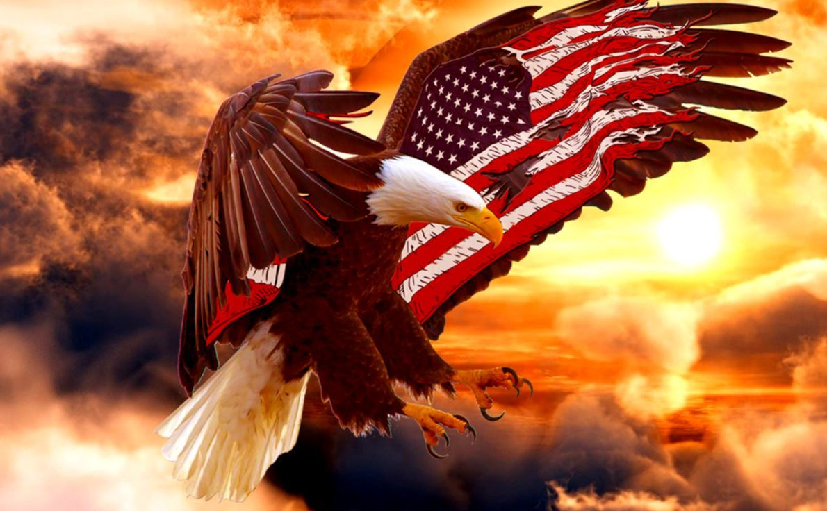 American Eagle Flag Wallpapers Top Free American Eagle Flag