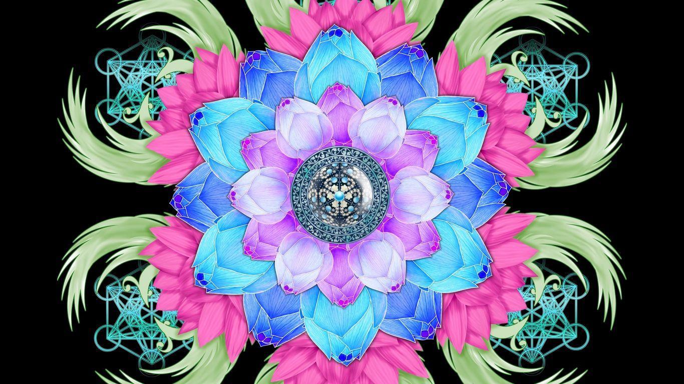 1366x768 Tải xuống hình nền 1366x768 mandala, hoa sen, mô hình, hoa