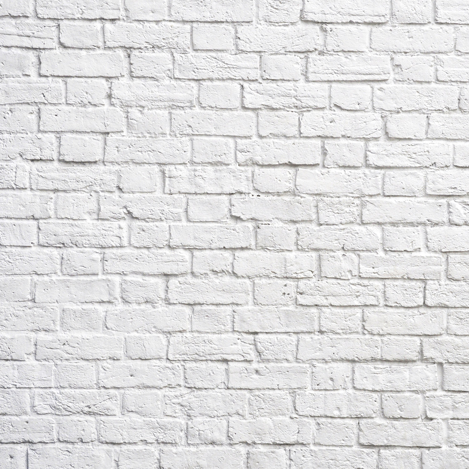 White Wall Wallpapers Top Free White Wall Backgrounds Wallpaperaccess