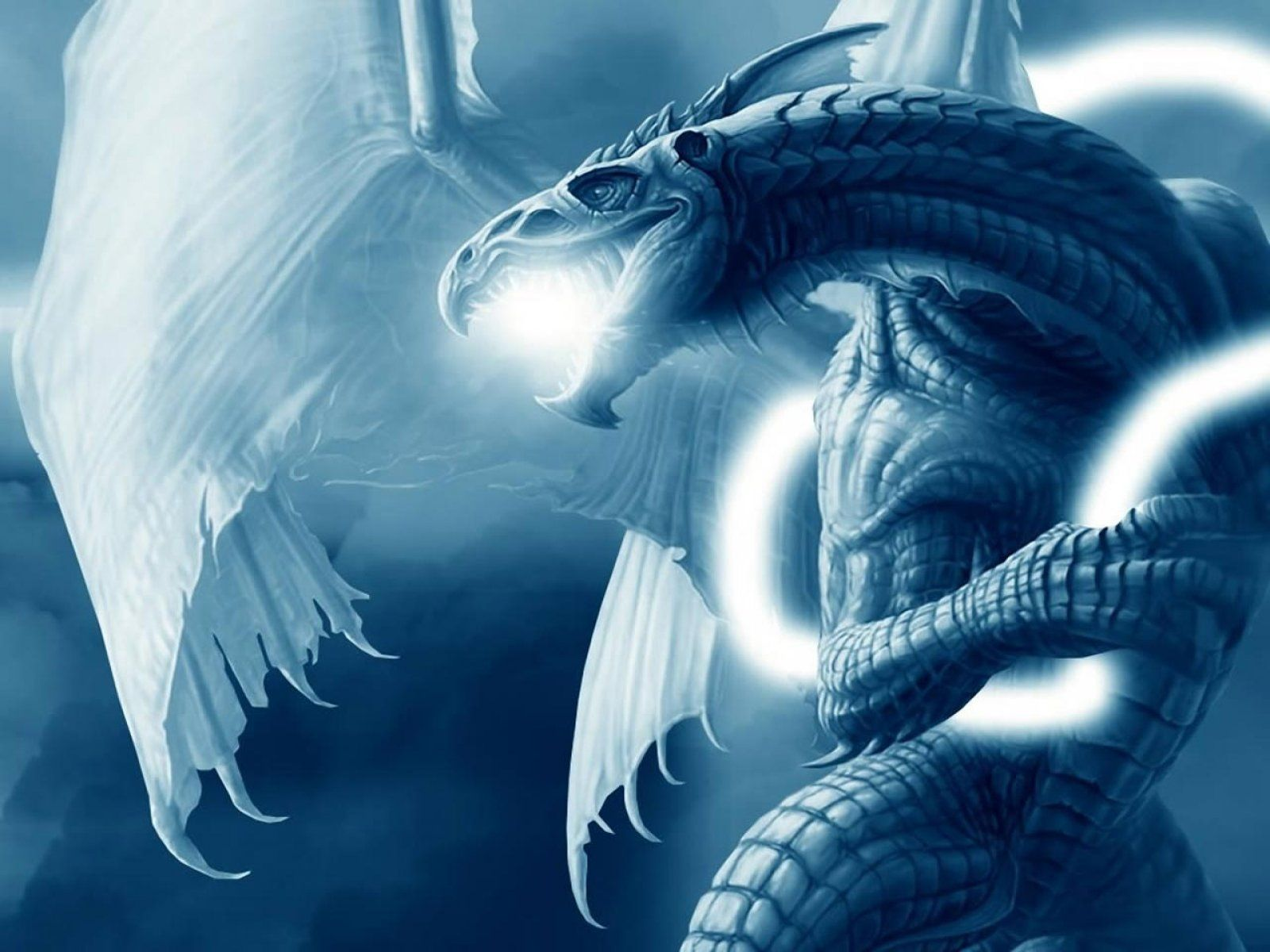 Blue Dragon Wallpapers Top Free Blue Dragon Backgrounds