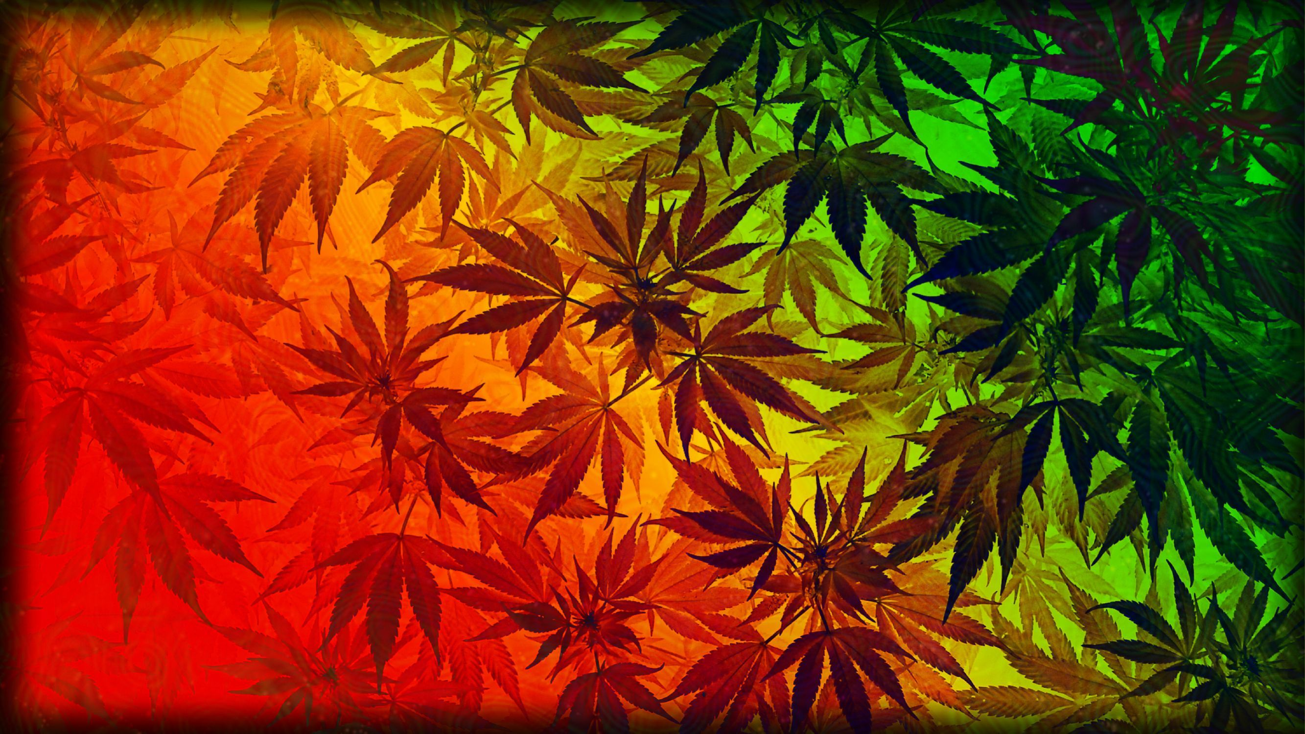 Marijuana Wallpapers - Top Free Marijuana Backgrounds ...