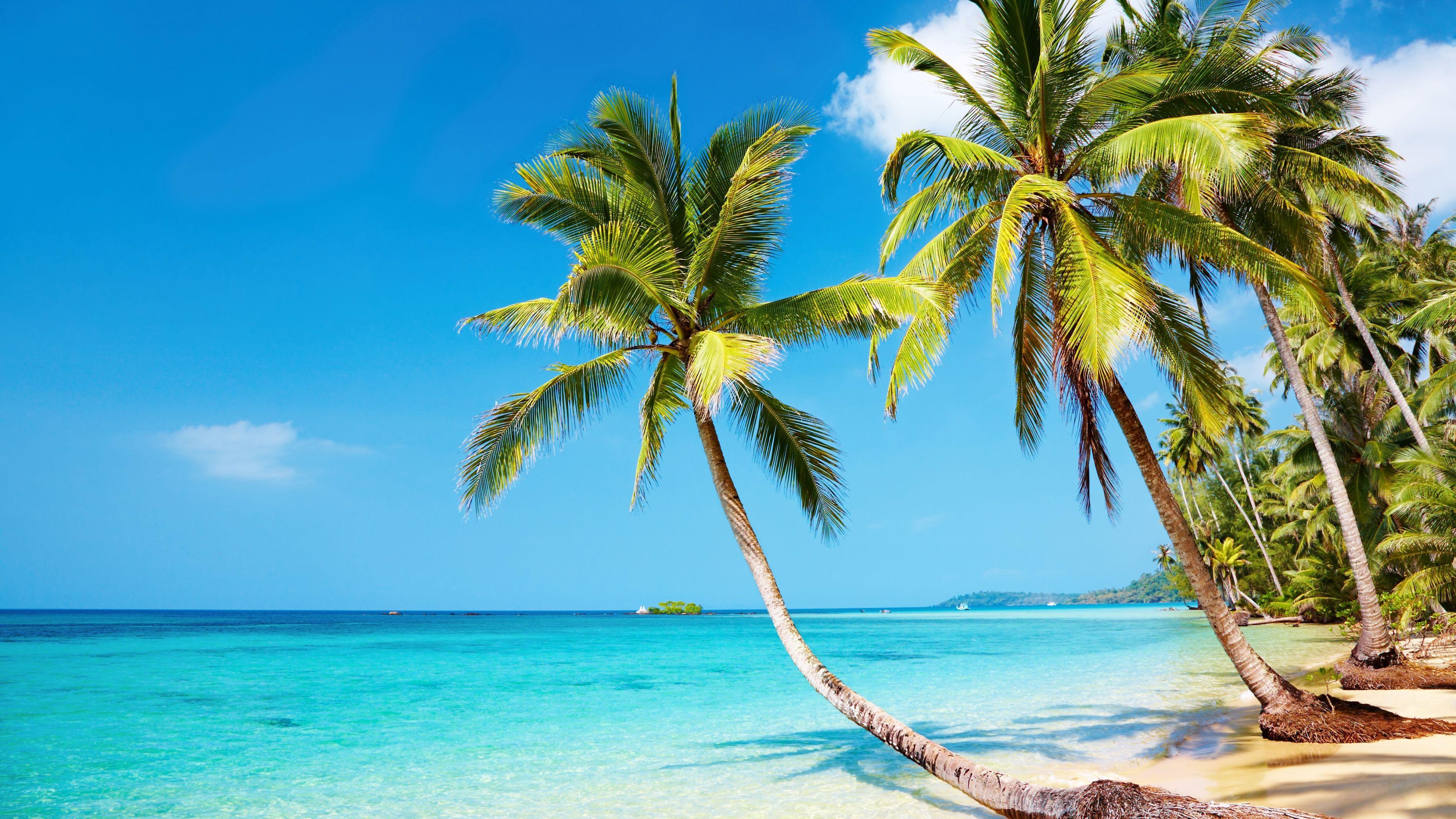 Beach 12K Wallpapers   Top Free Beach 12K Backgrounds   WallpaperAccess