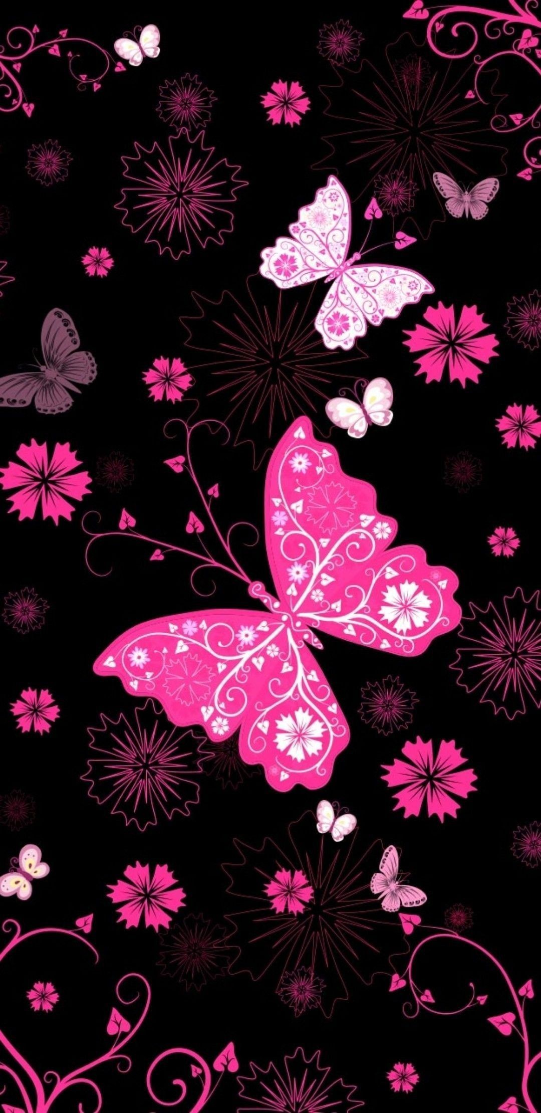 Black And Pink Butterfly Wallpapers Top Free Black And
