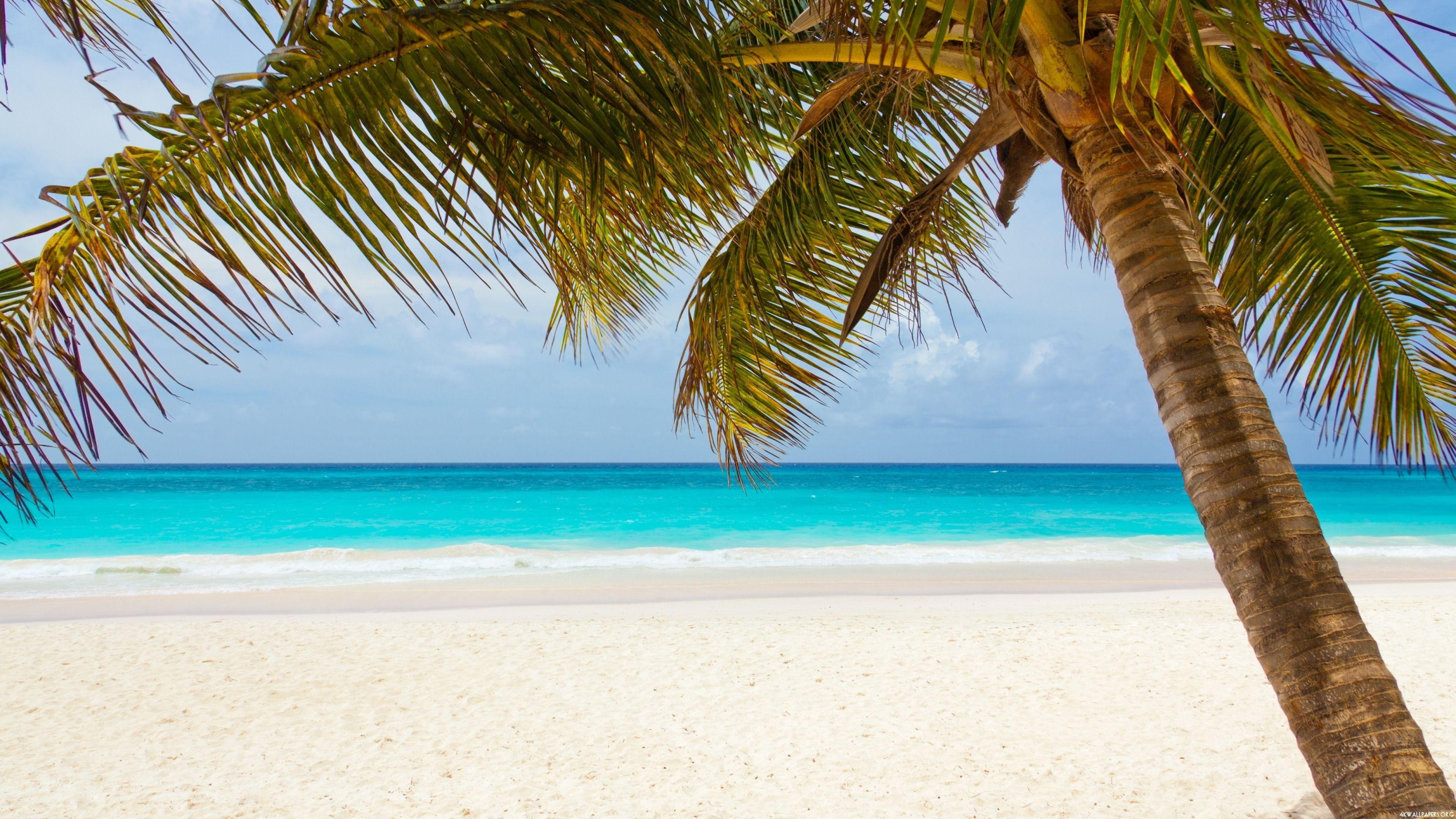 3840X2160 Beach Wallpapers - Top Free 3840X2160 Beach ...