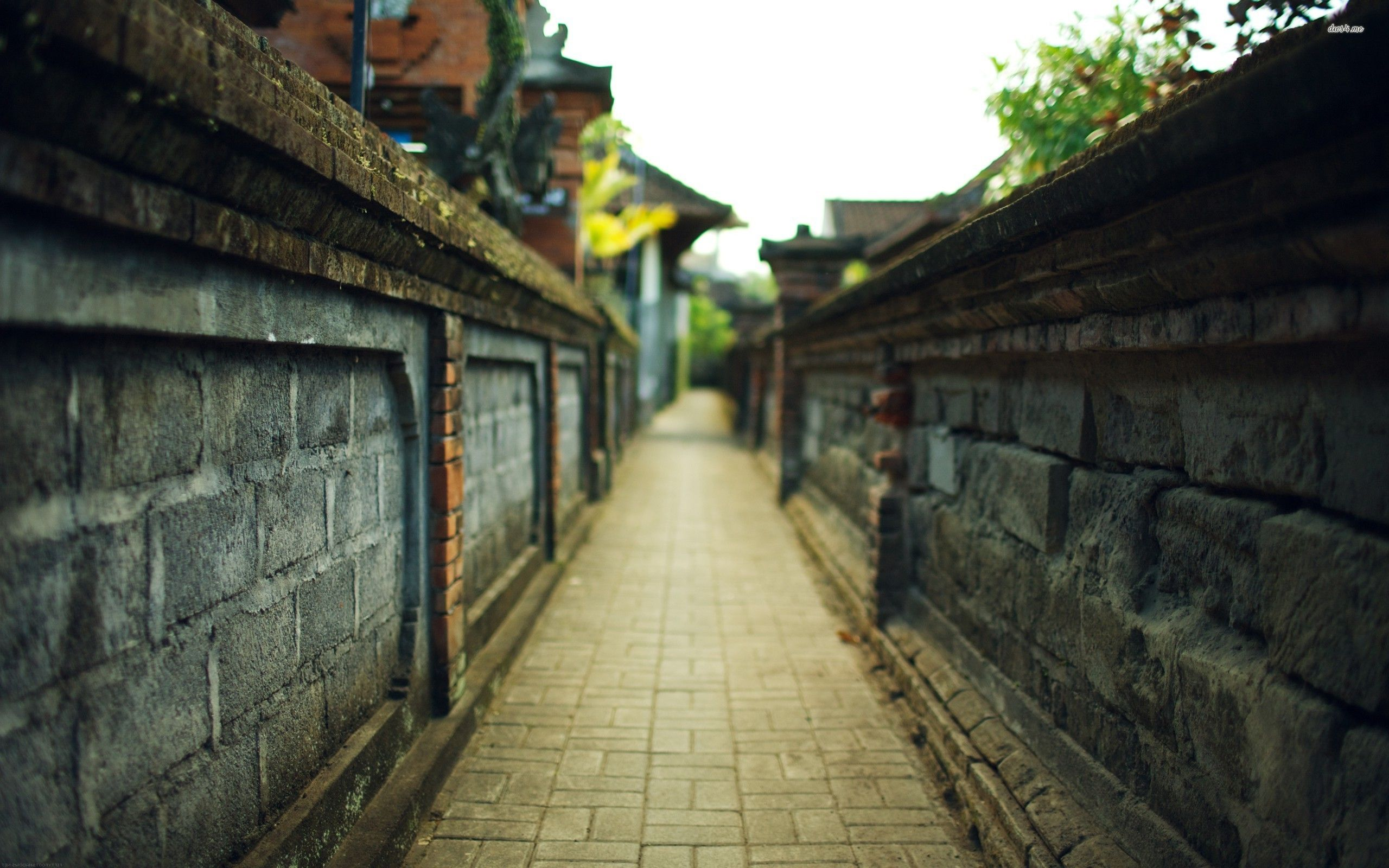 Top Free Tokyo Alley Backgrounds