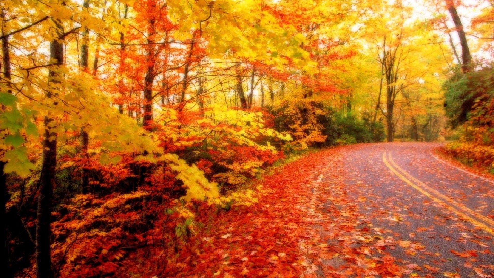 Autumn Season Wallpapers Top Free Autumn Season Backgrounds Wallpaperaccess