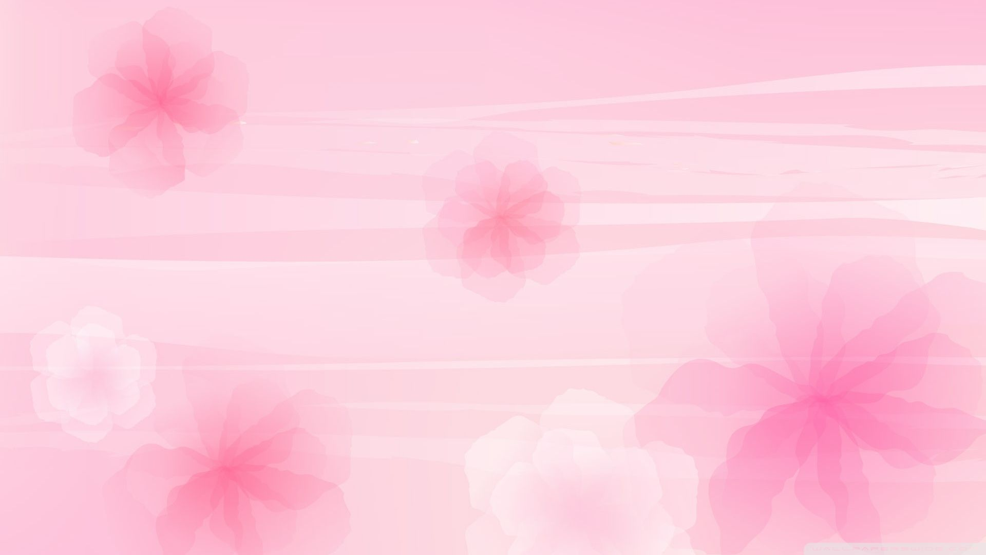 High Resolution Pink Wallpapers Top Free High Resolution