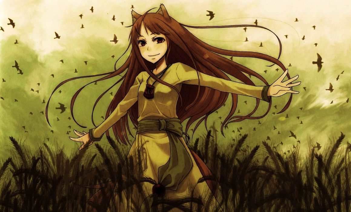 Spice And Wolf Wallpapers Top Free Spice And Wolf Backgrounds Wallpaperaccess