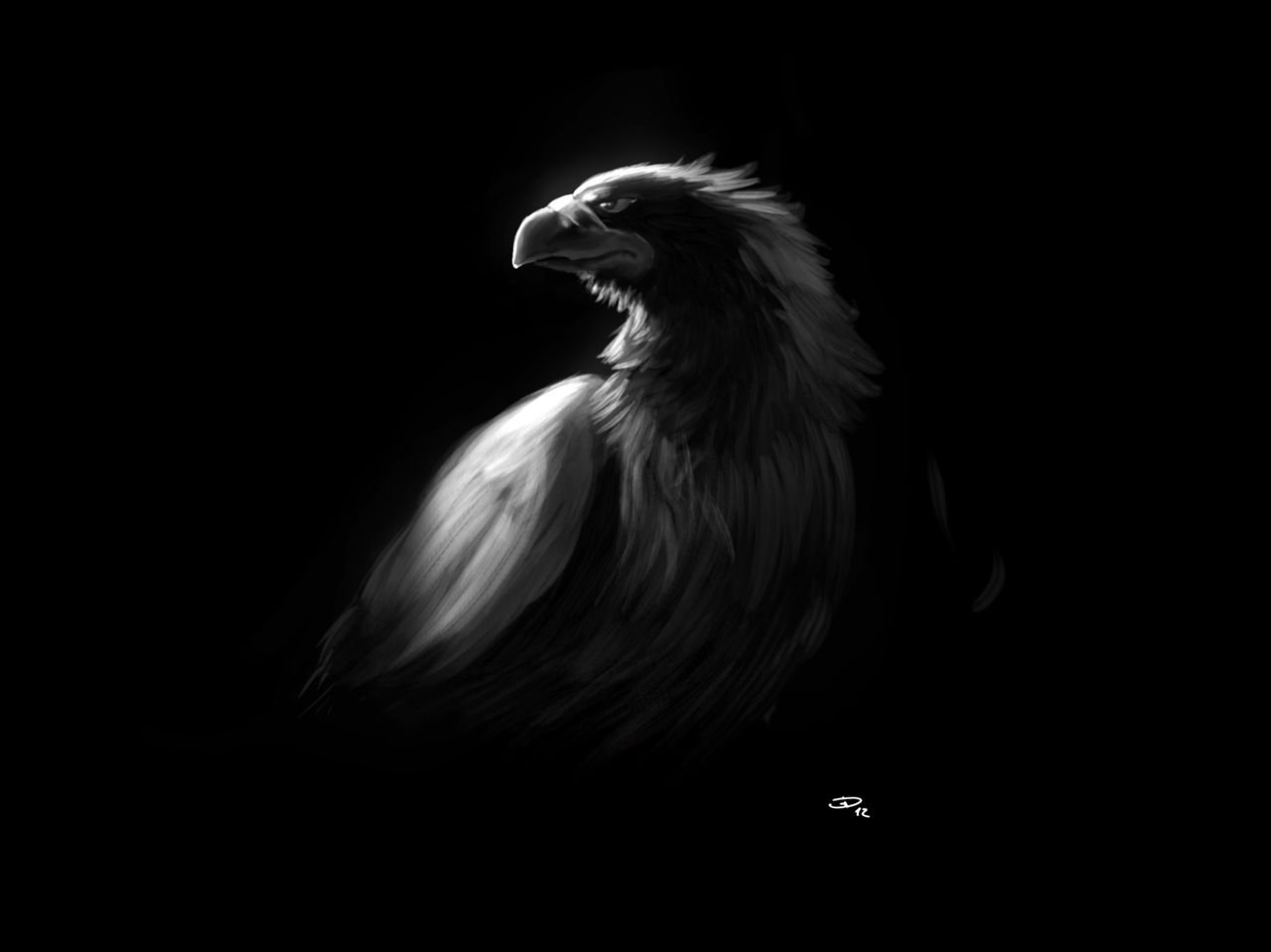 Black Eagle Wallpapers Top Free Black Eagle Backgrounds Wallpaperaccess
